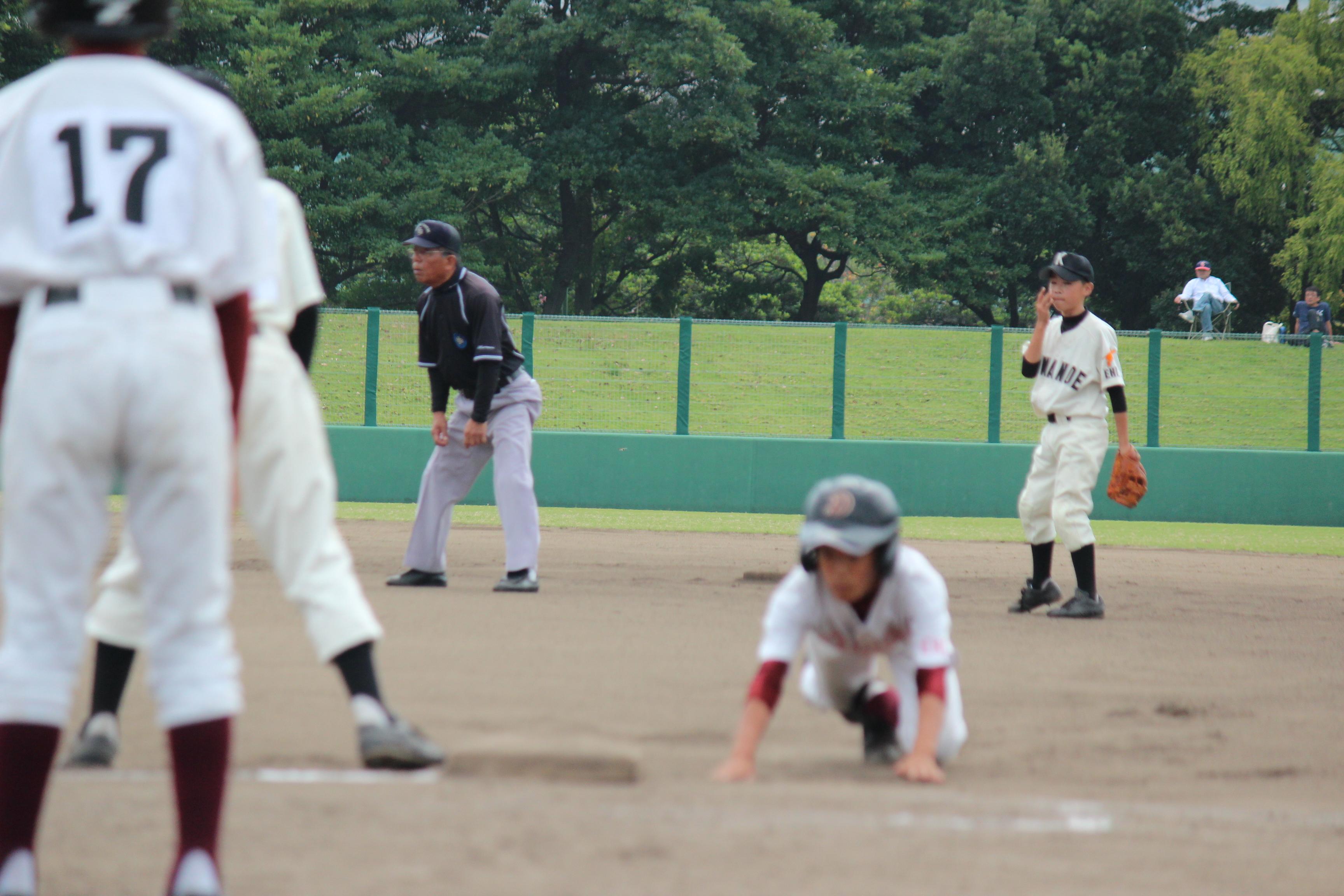 野球 (564)