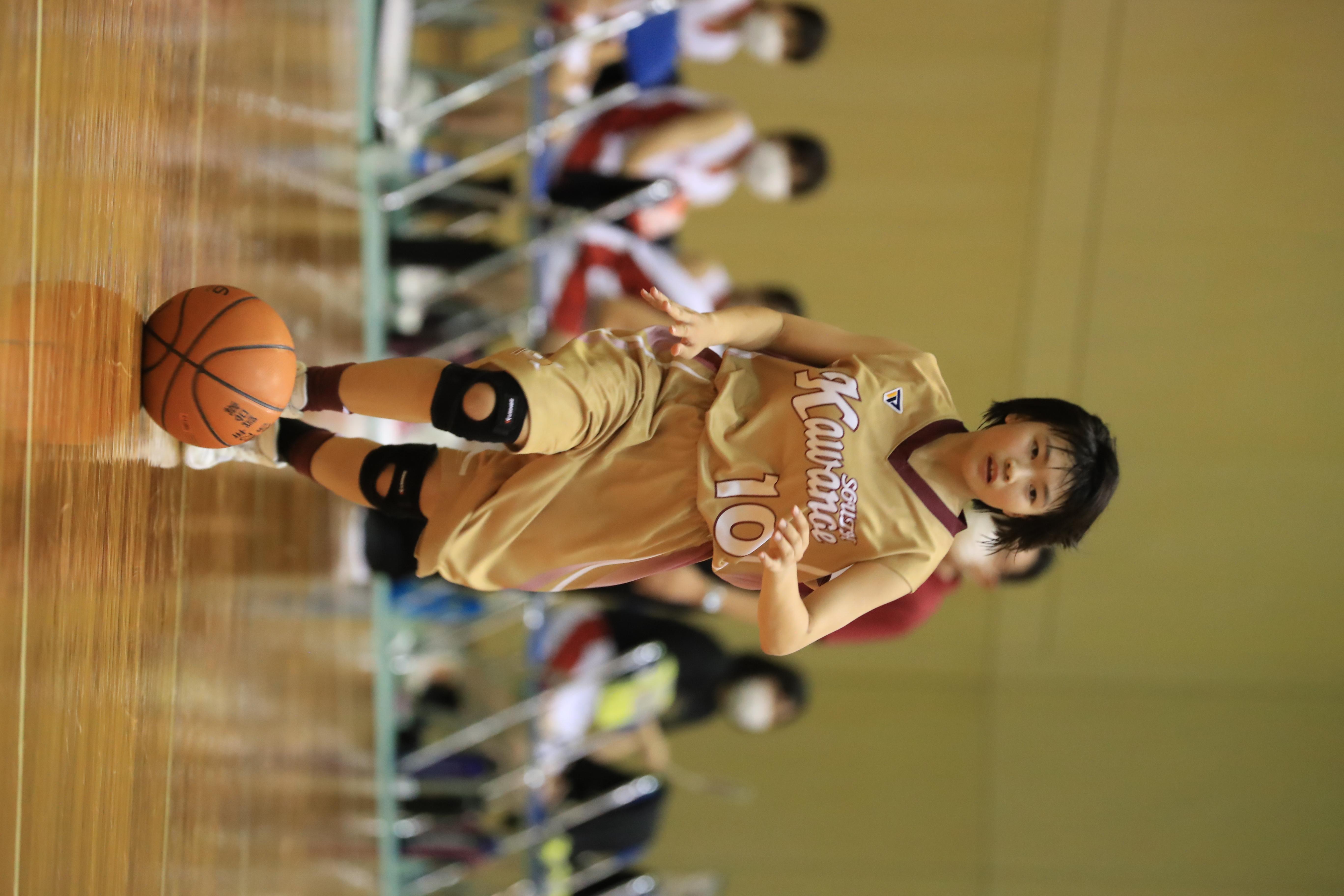 バスケット (623)