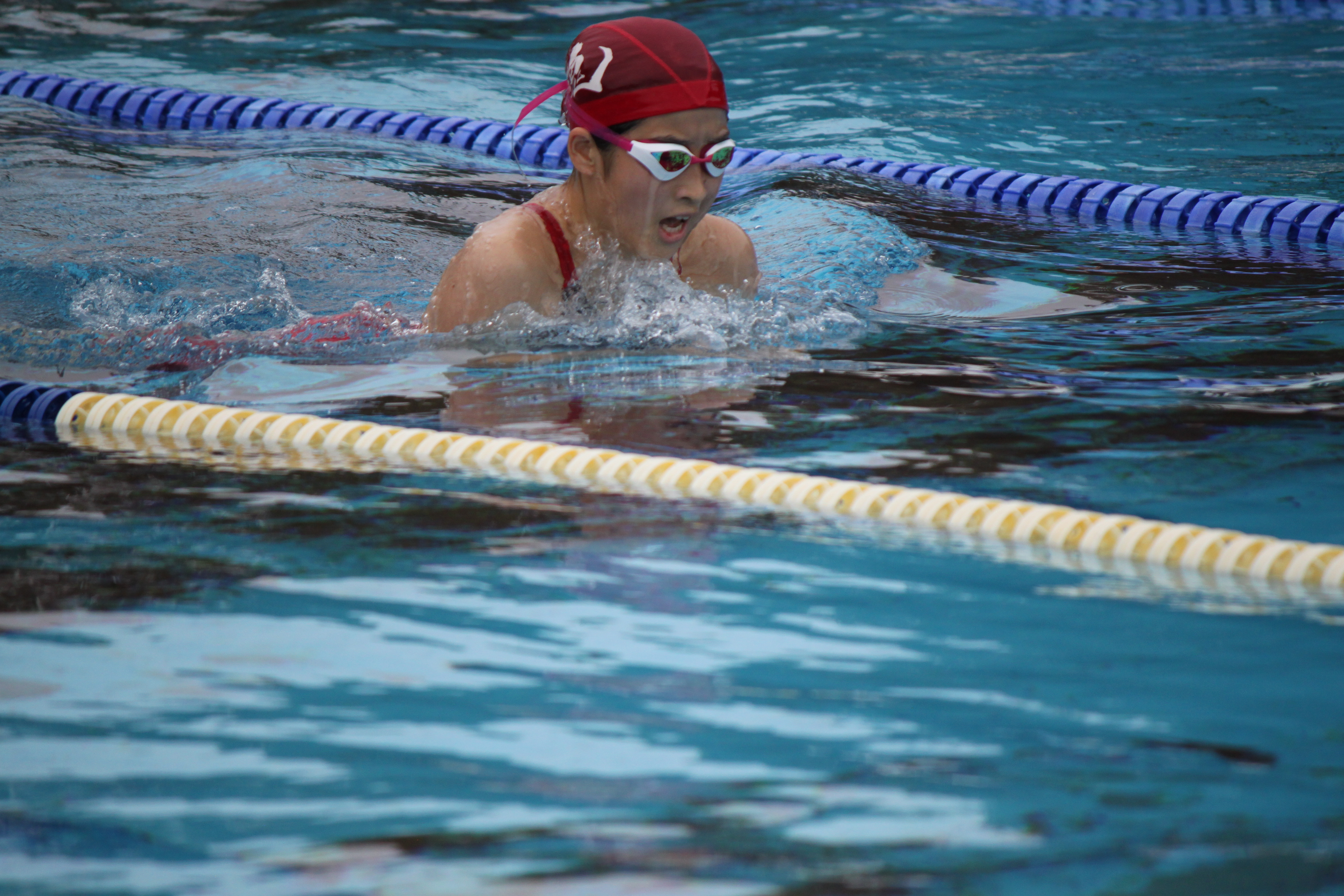 水泳競技 (32)