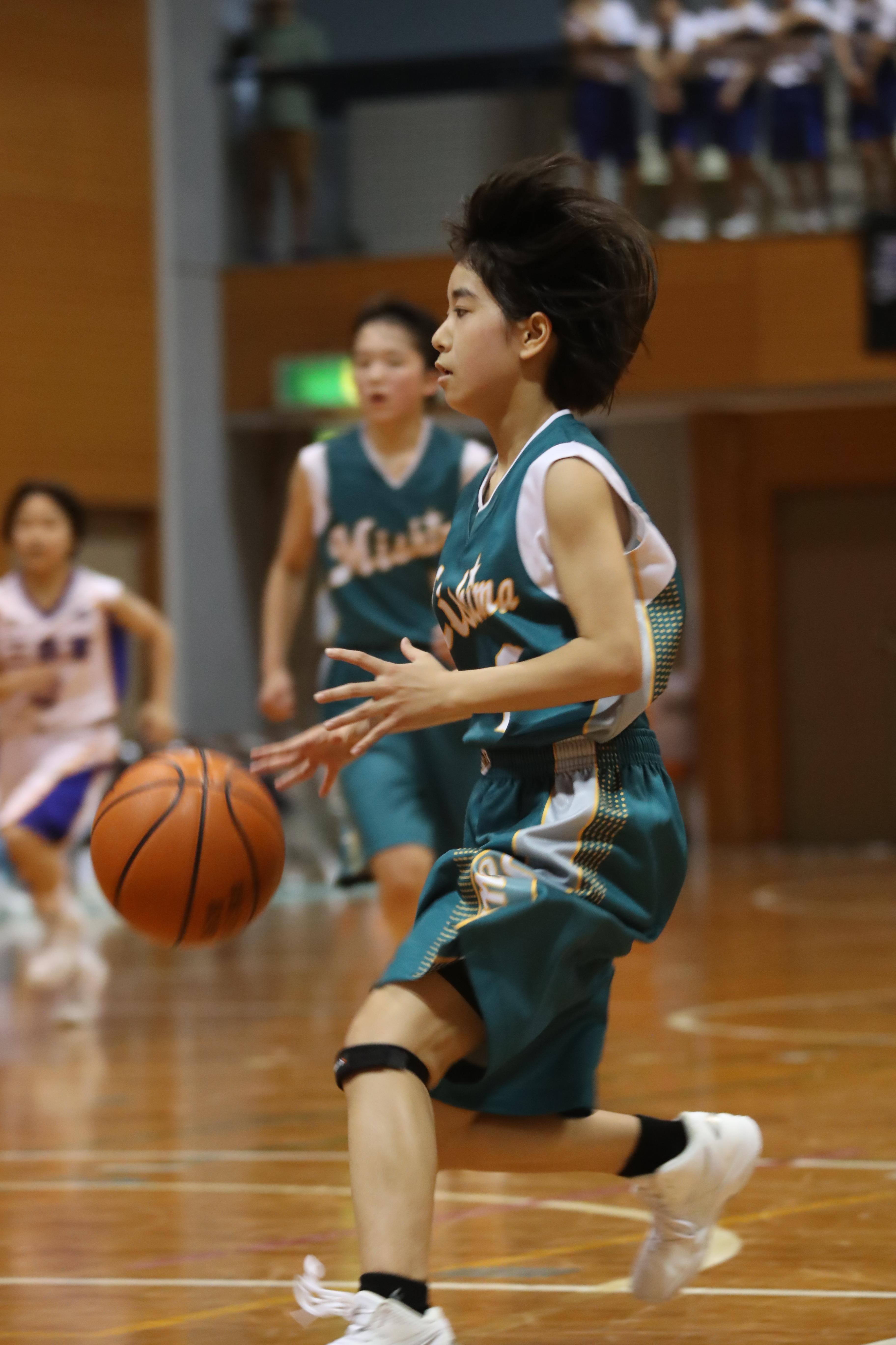 バスケット (317)
