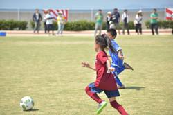 mini_soccer (676)