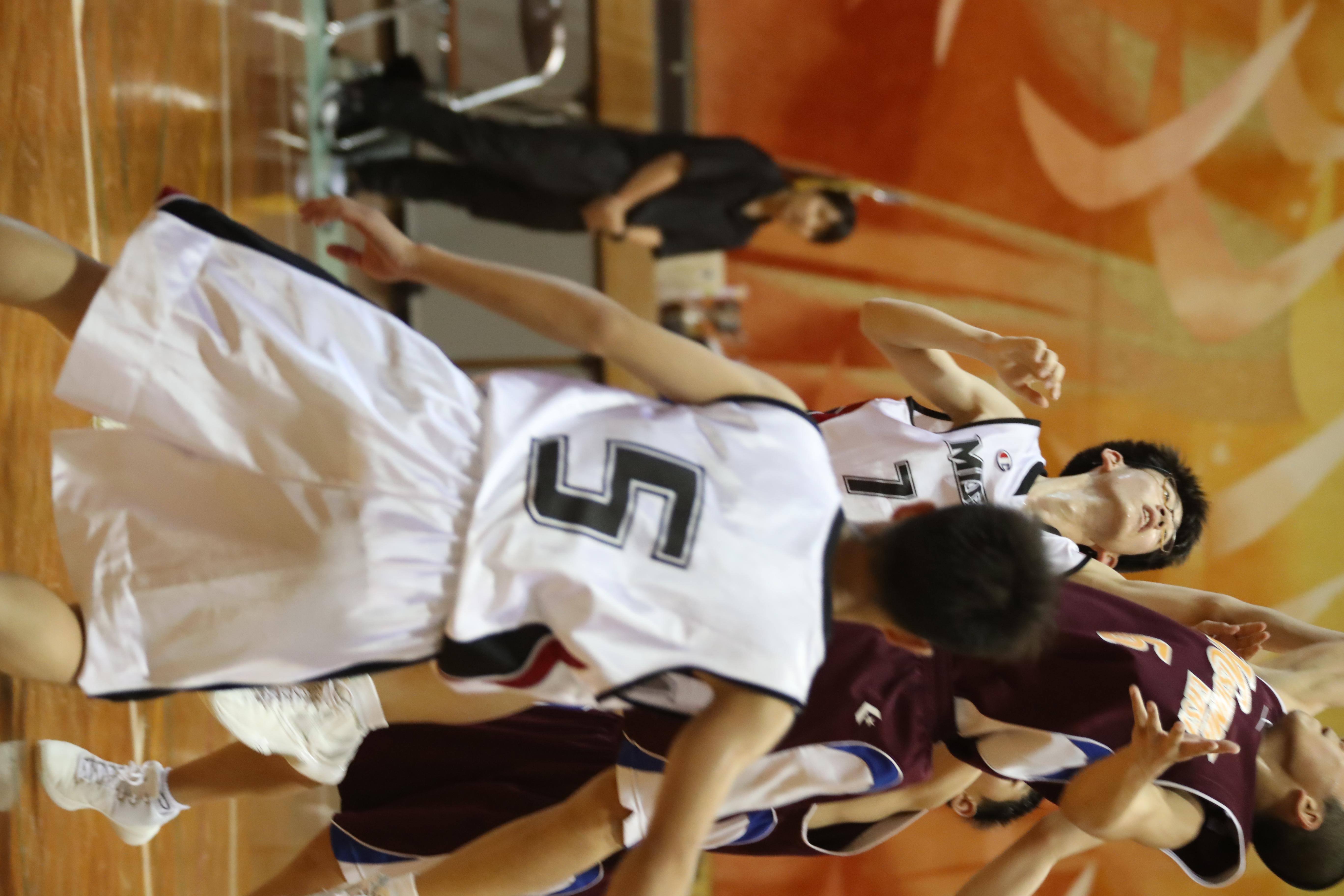 バスケット (186)
