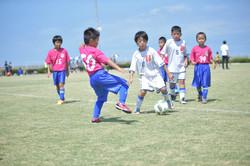 mini_soccer (393)