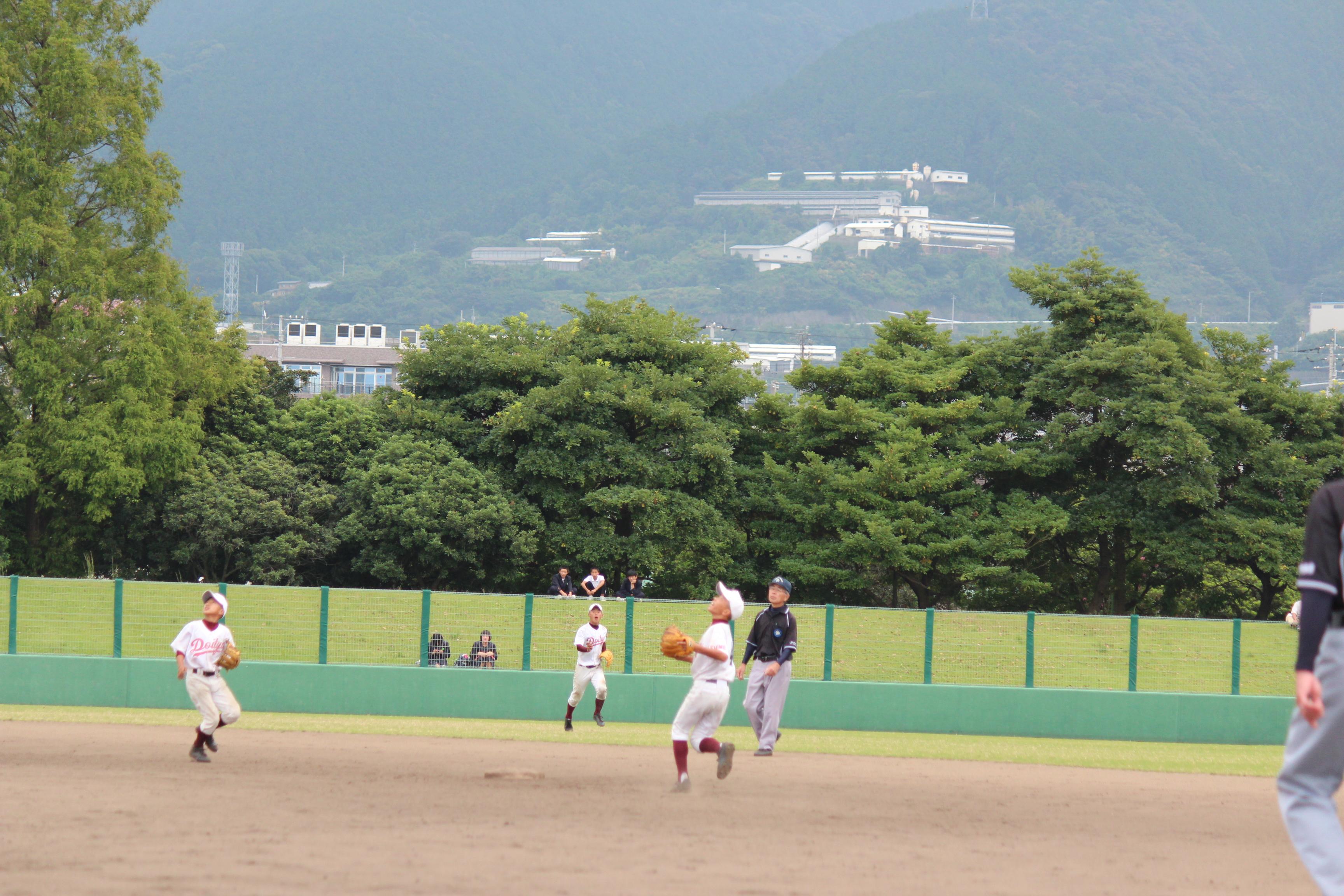 野球 (309)