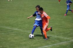 サッカー (230)