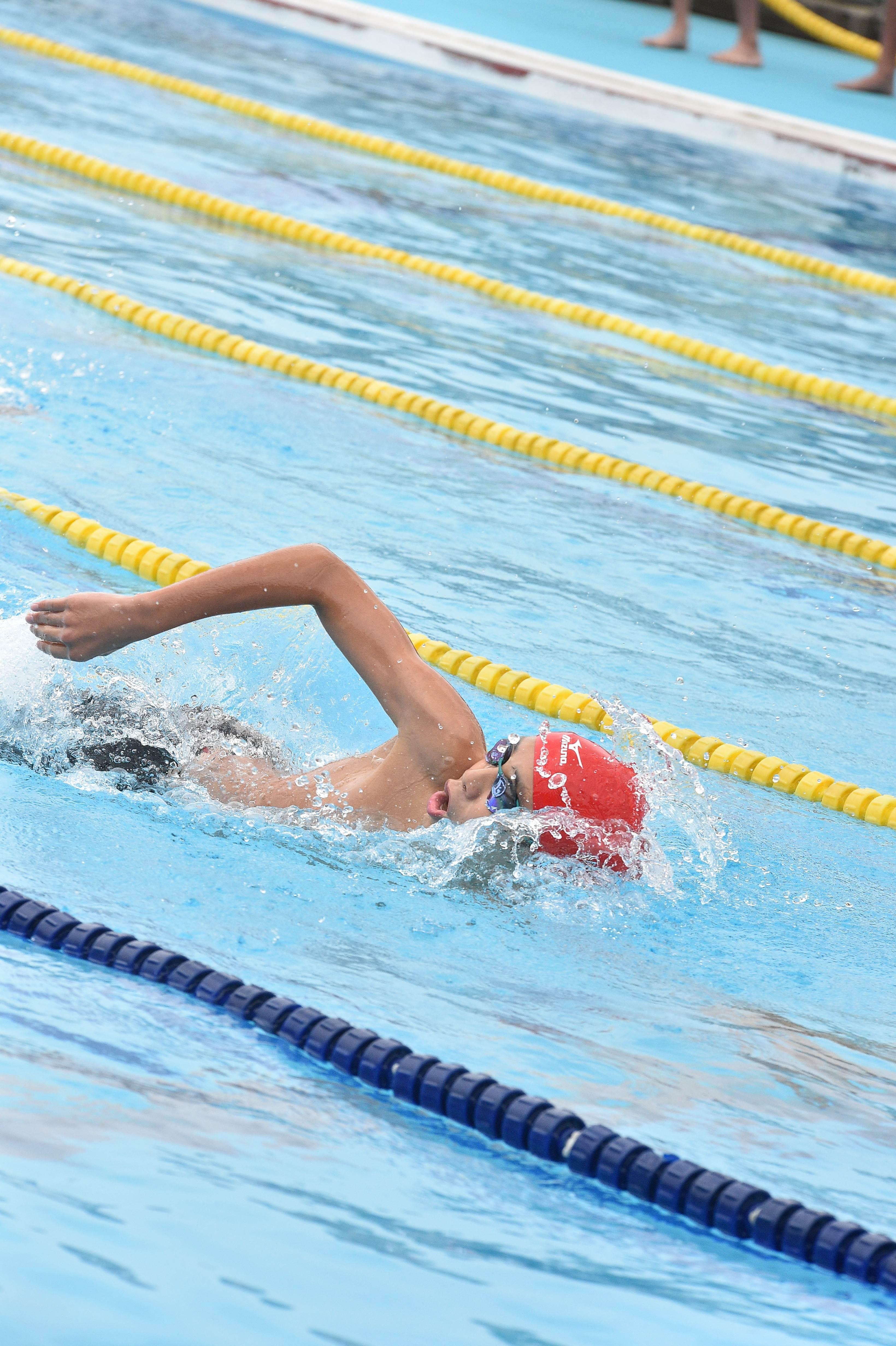 水泳 (137)