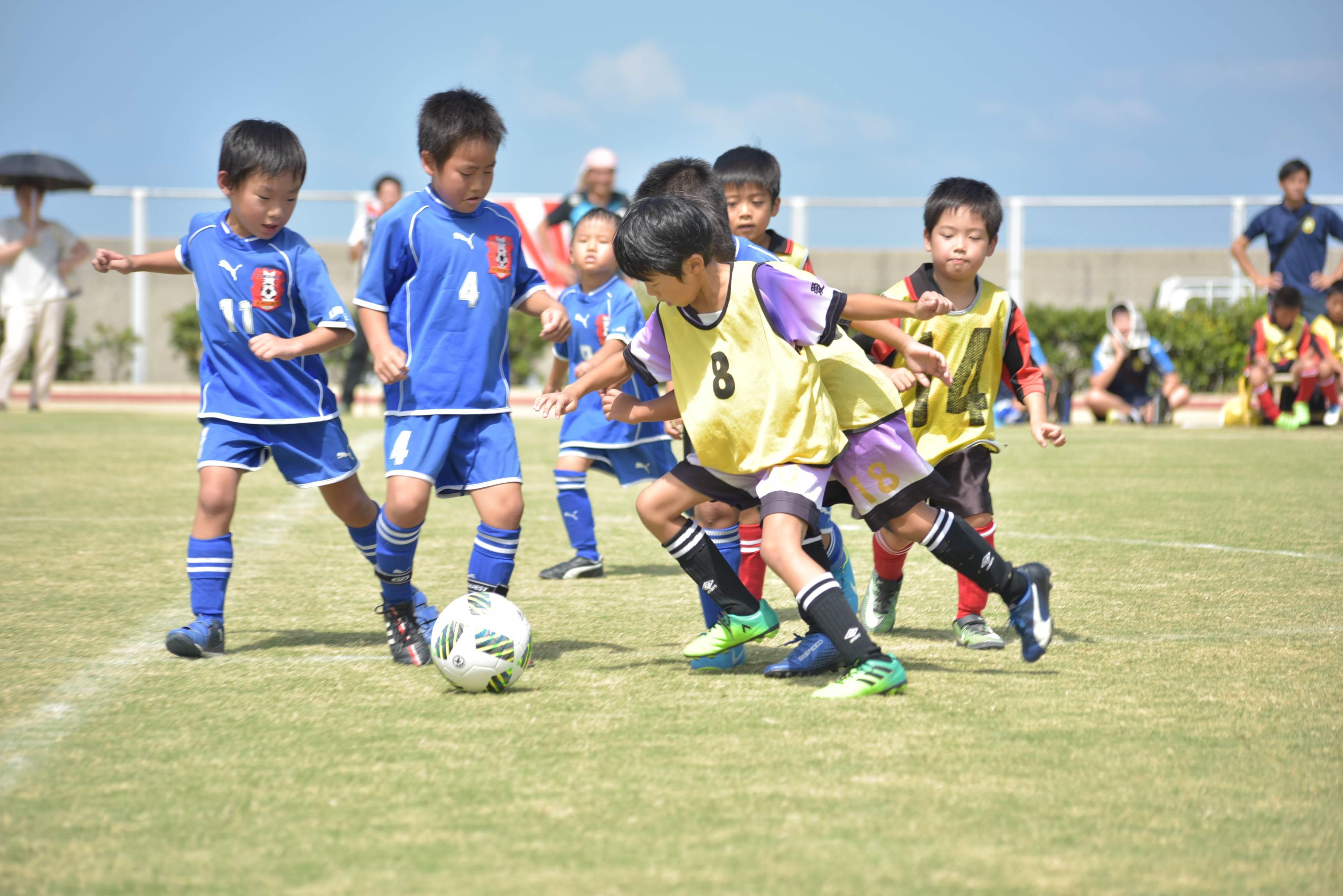 mini_soccer (622)