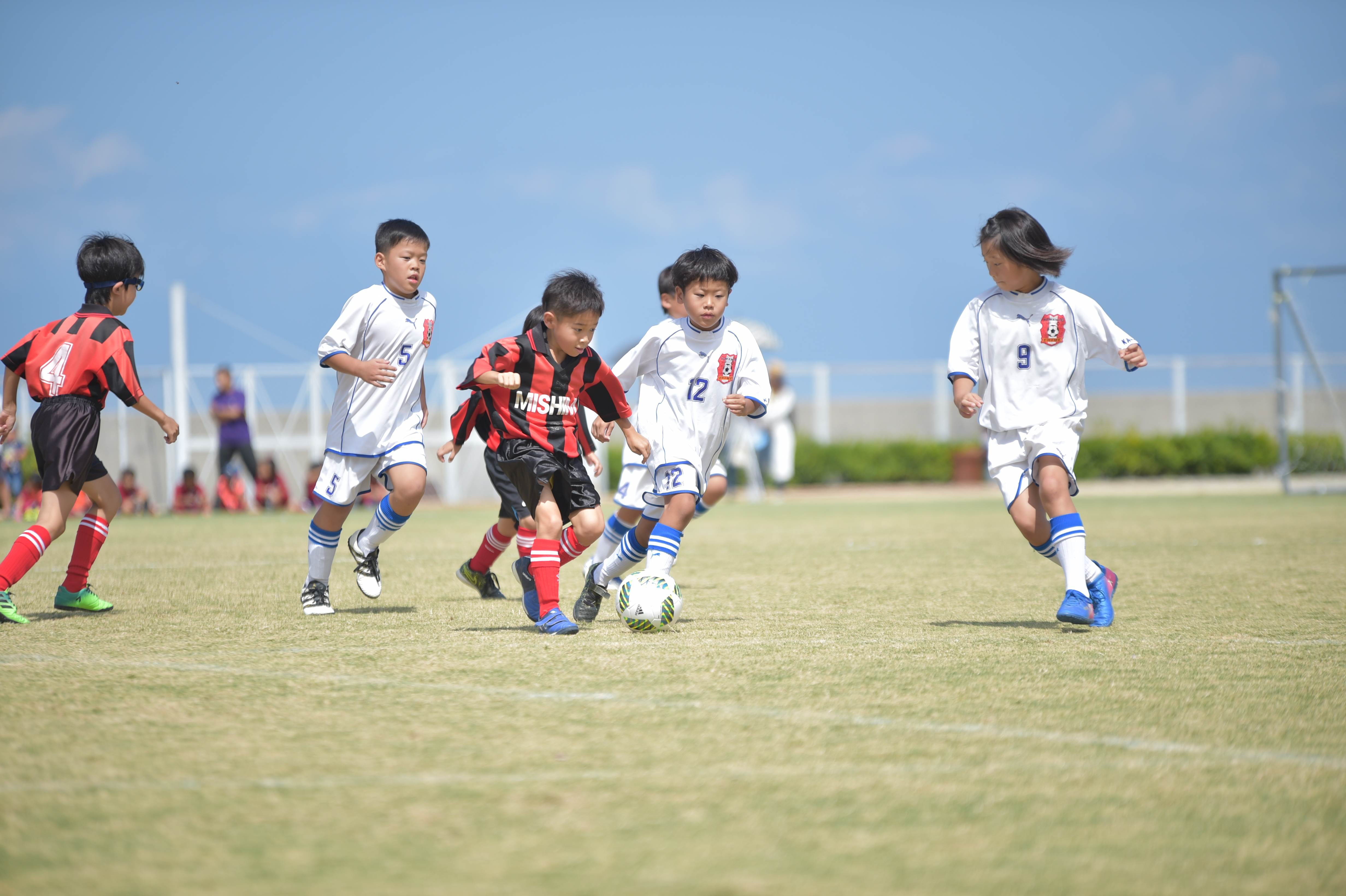 mini_soccer (314)