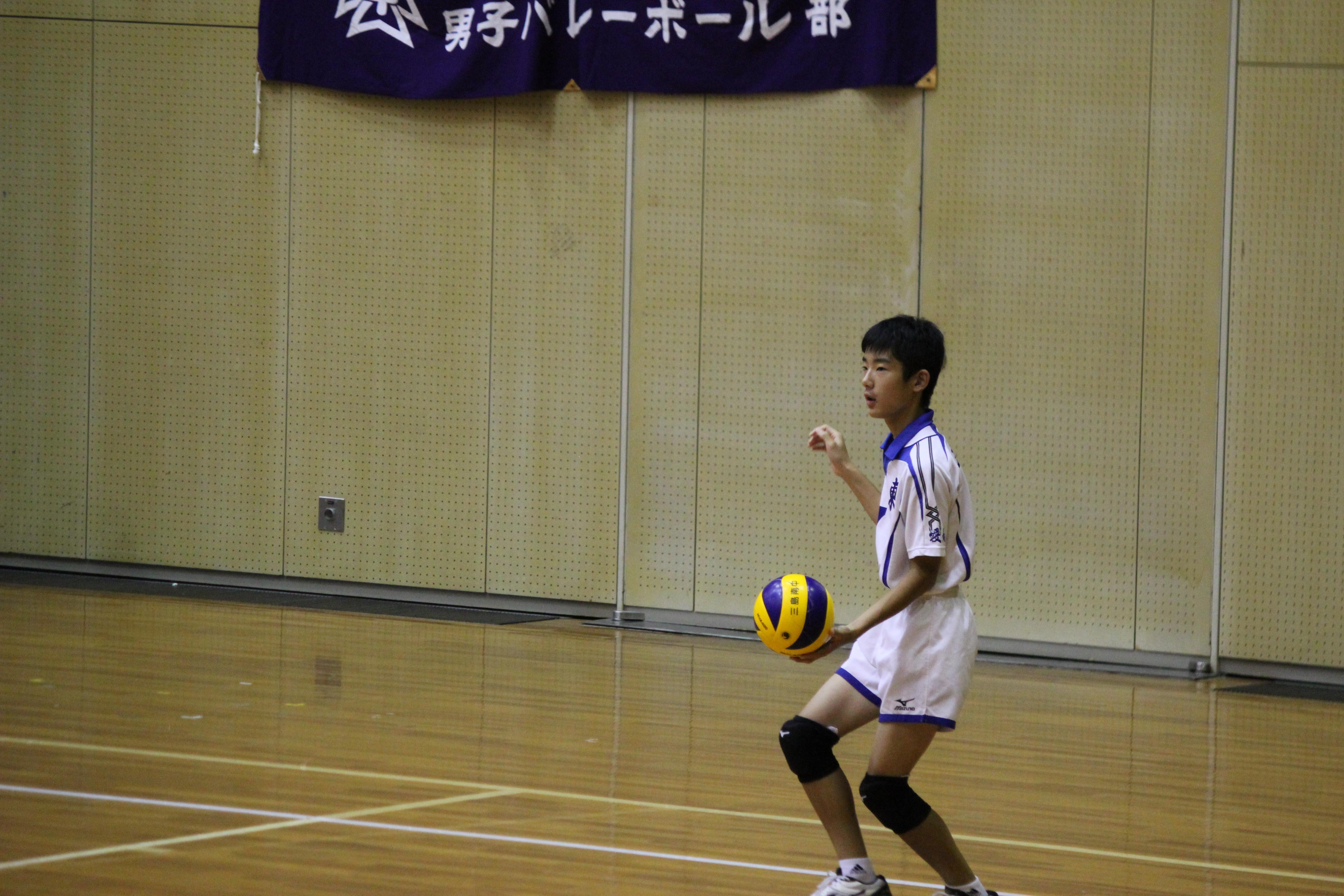 バレーボール (354)