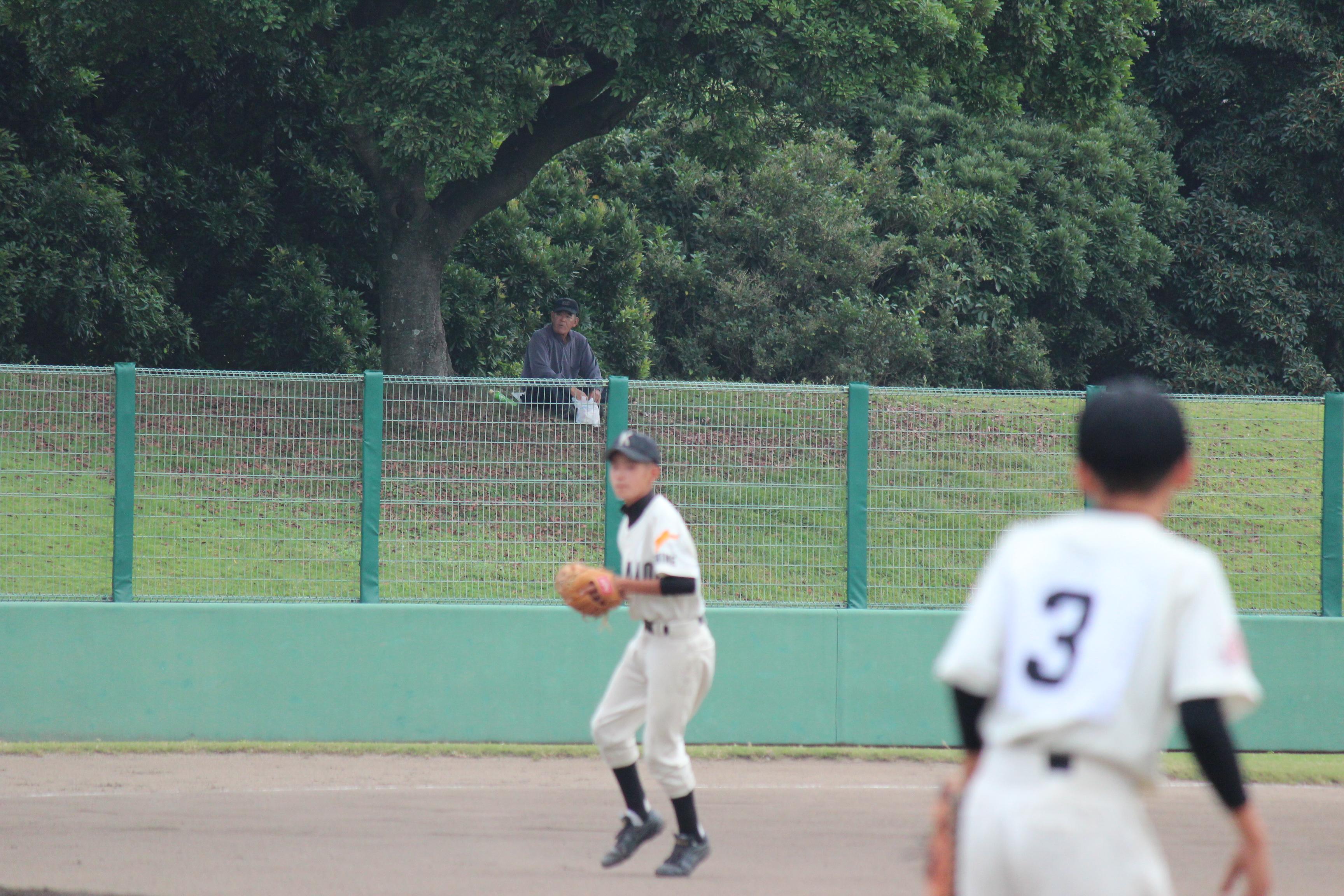 野球 (541)