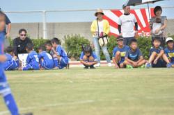 mini_soccer (556)
