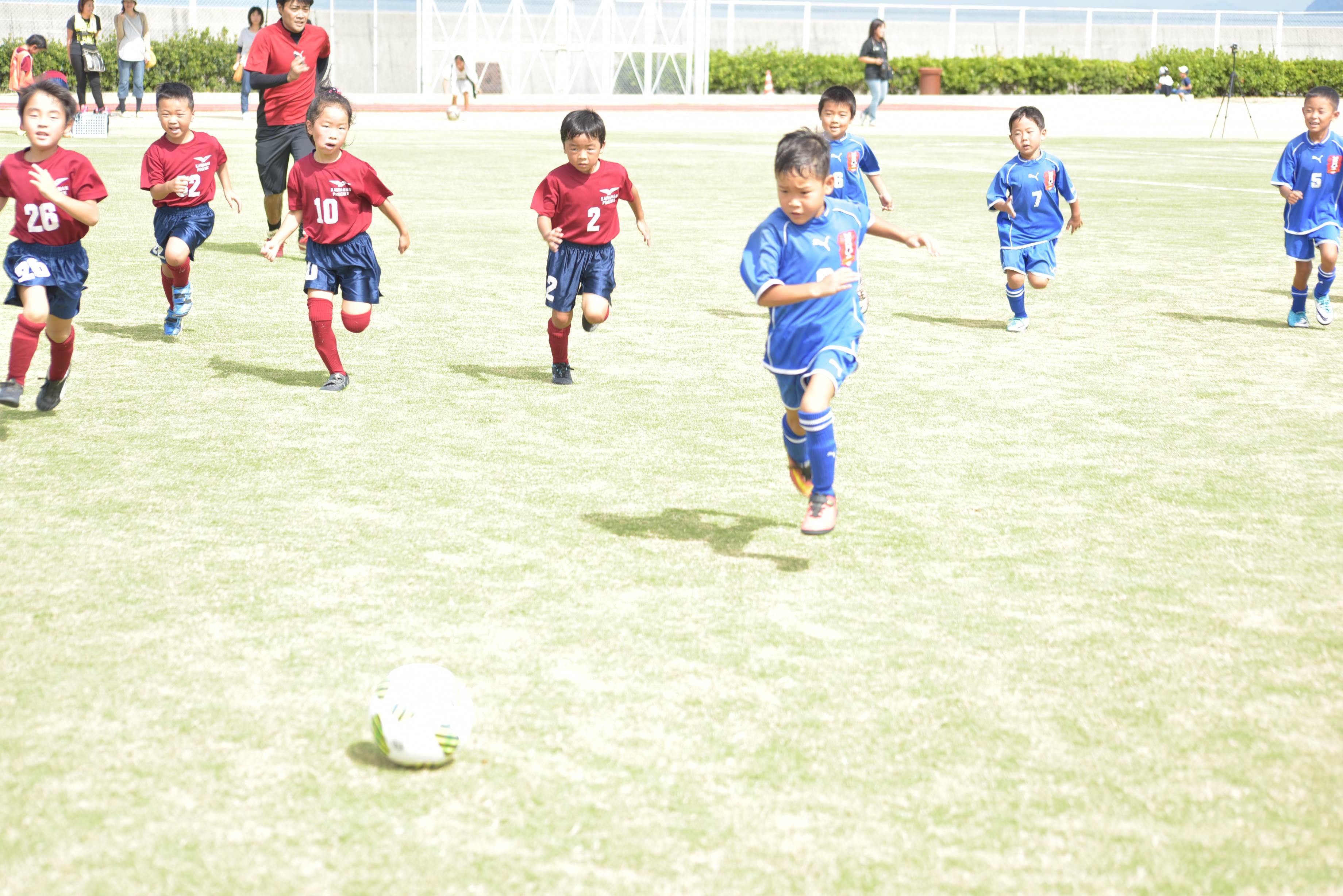 mini_soccer (559)