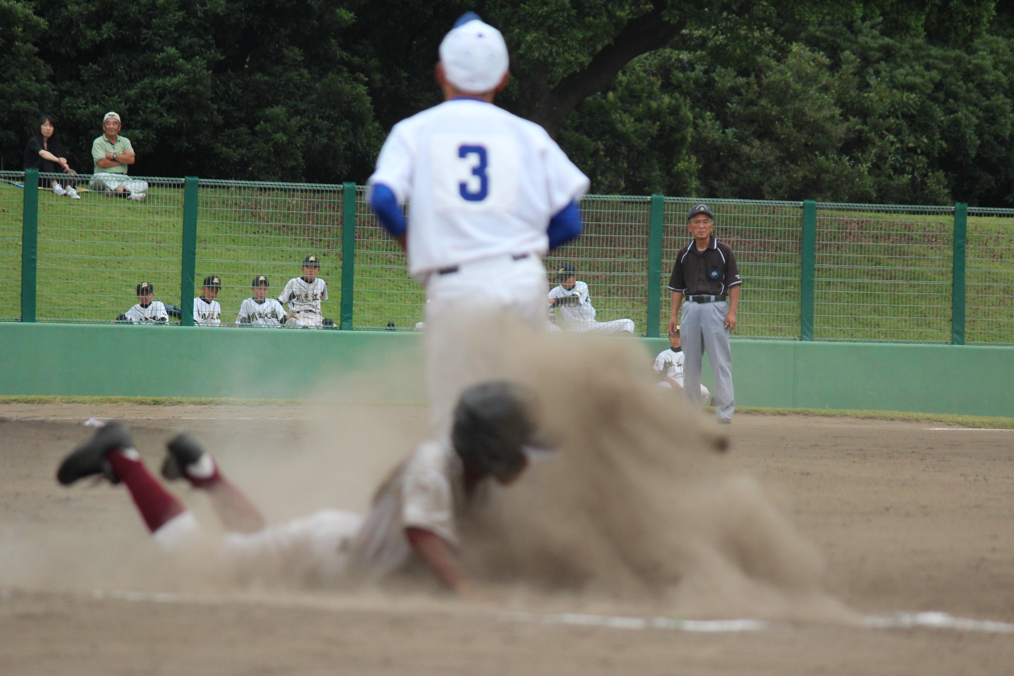 野球 (290)