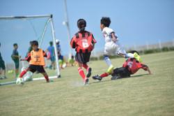 mini_soccer (345)