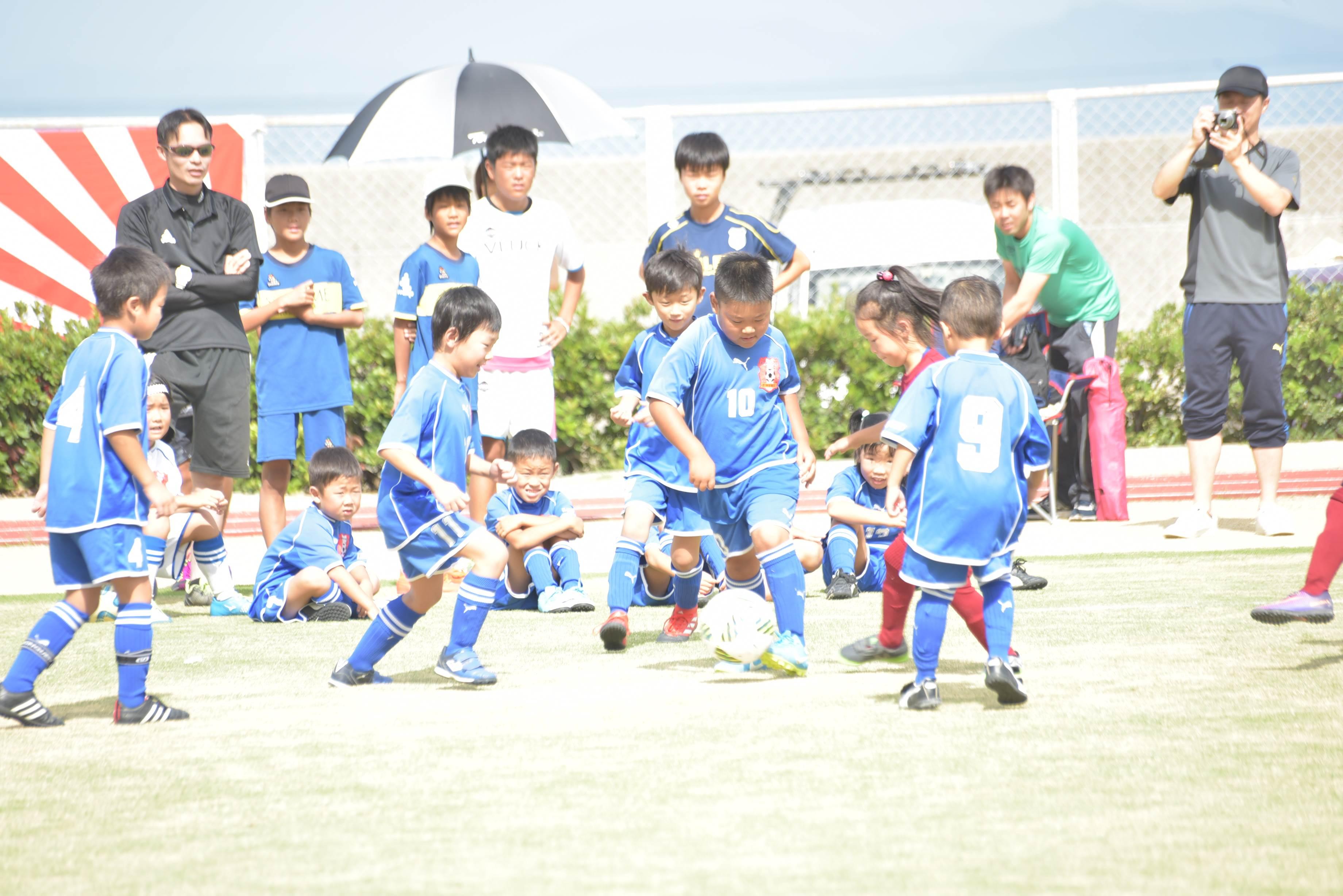 mini_soccer (539)