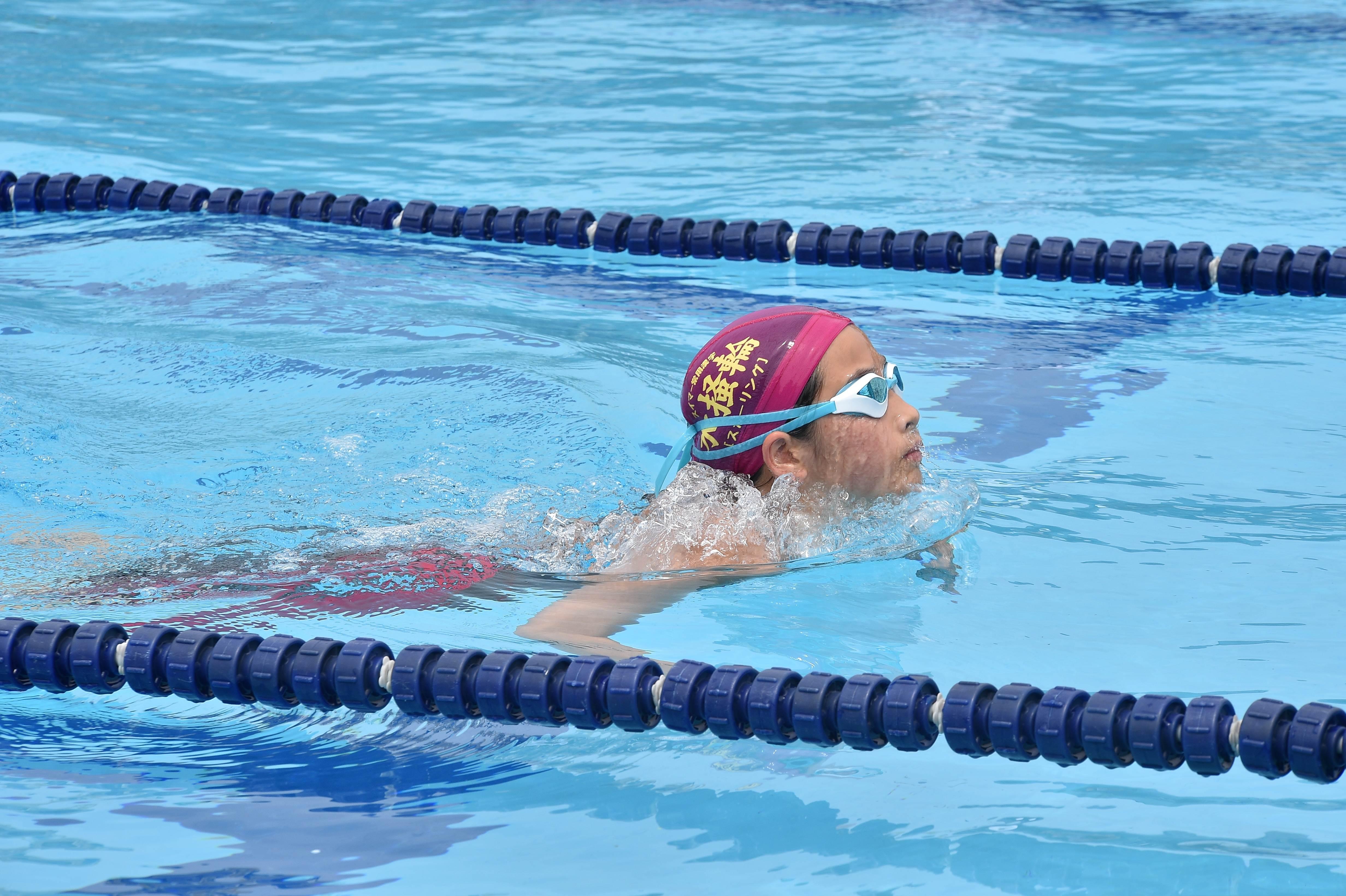 水泳 (50)