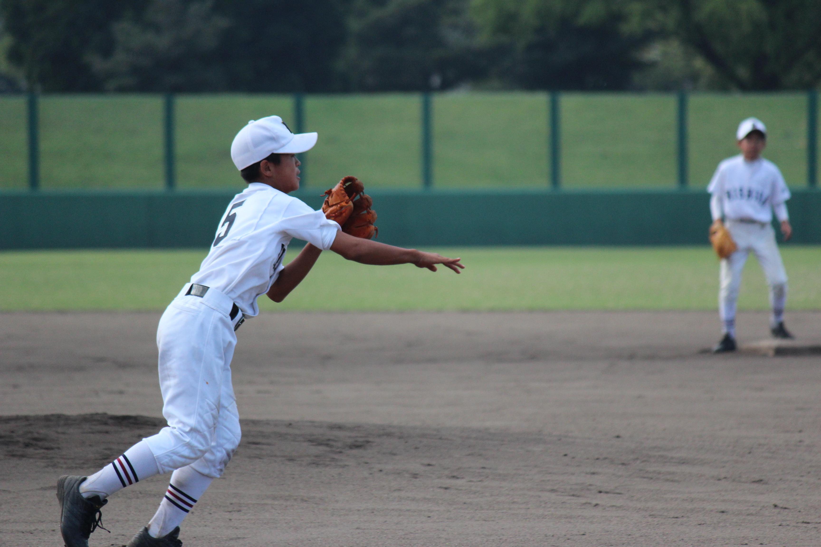 野球 (360)