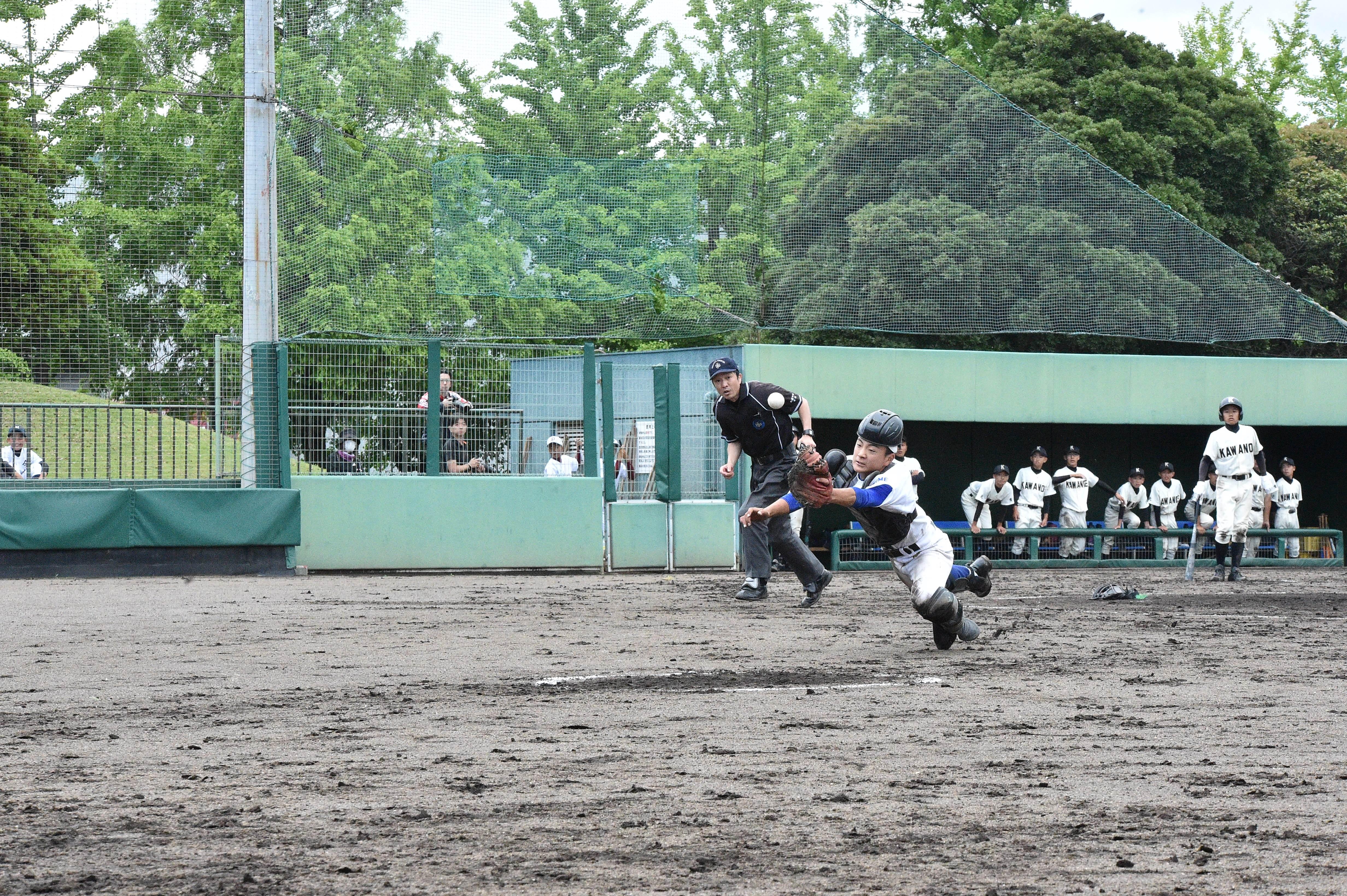 野球 (7)