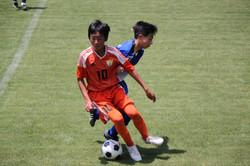 サッカー (773)