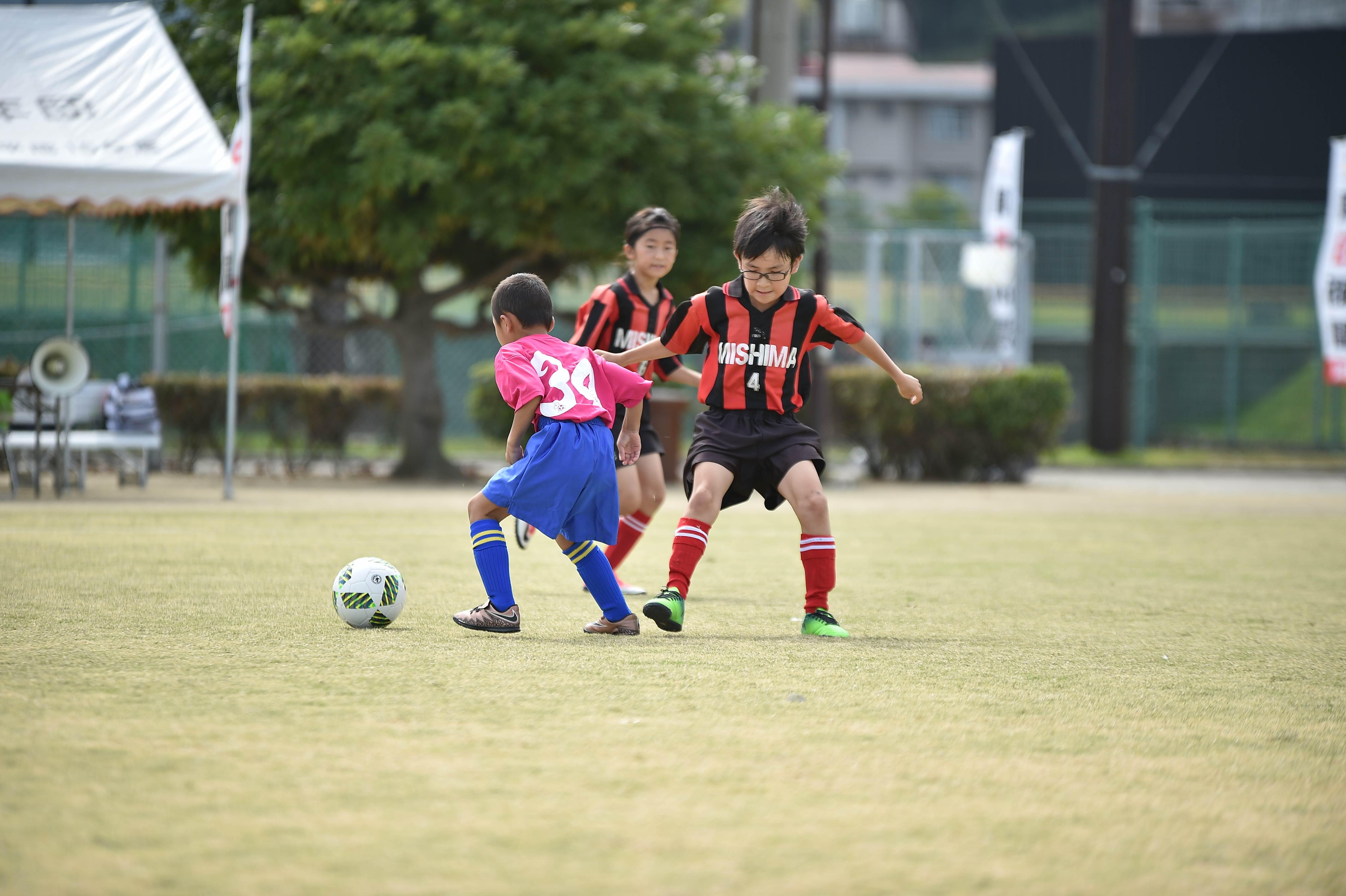 mini_soccer (176)