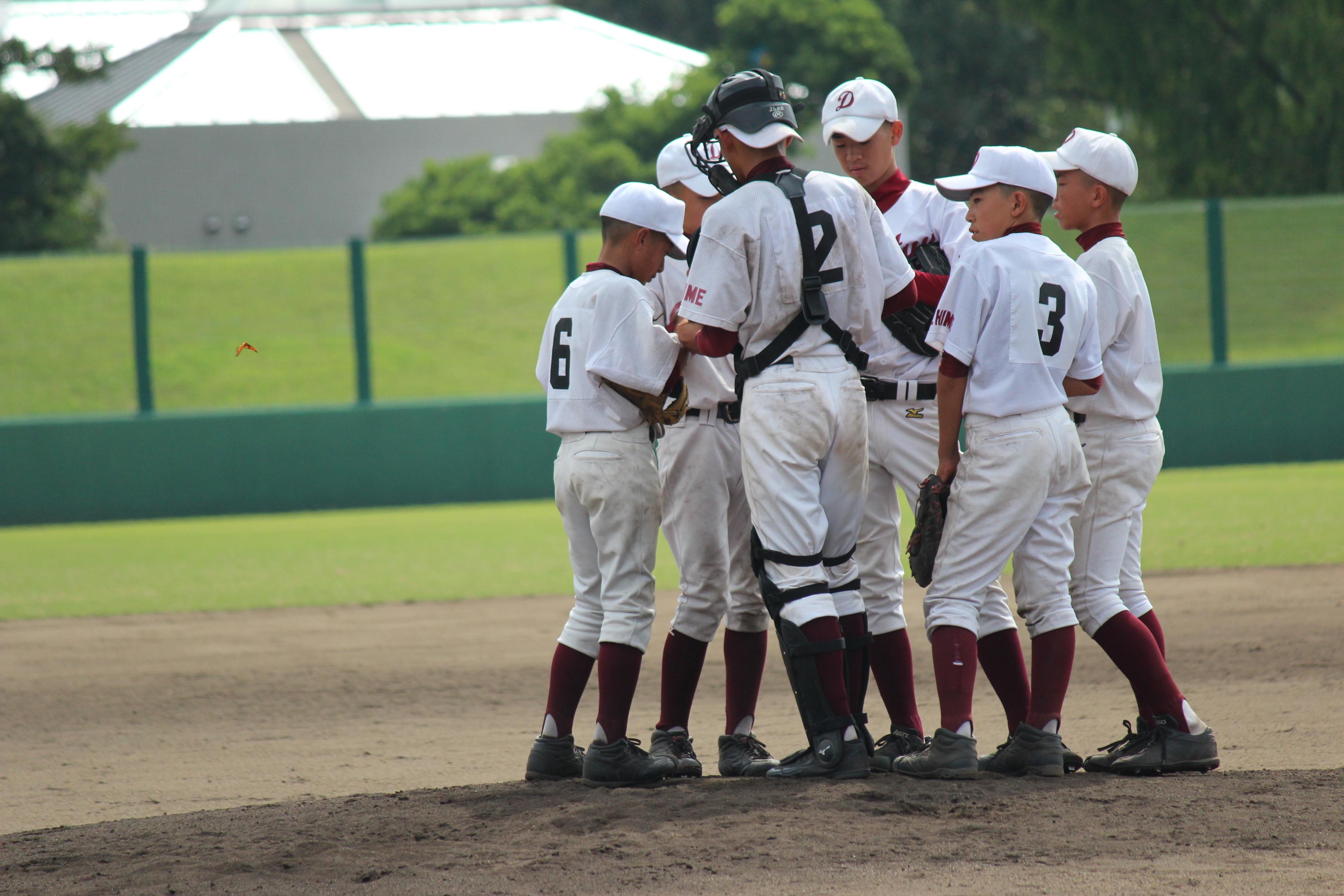 野球 (834)