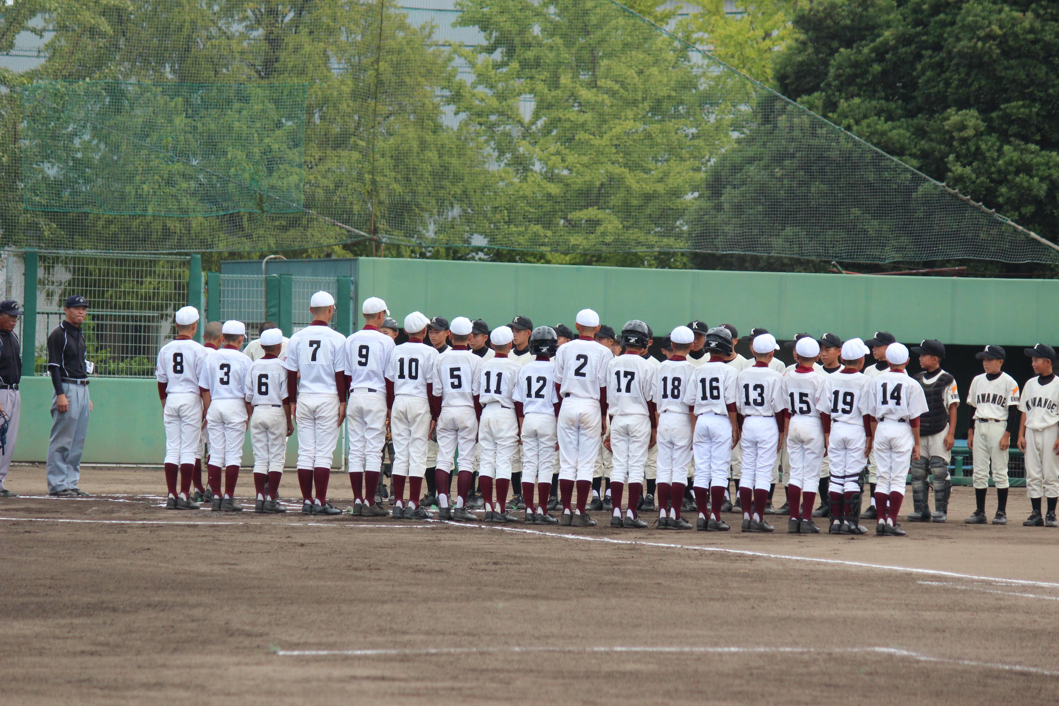 野球 (523)