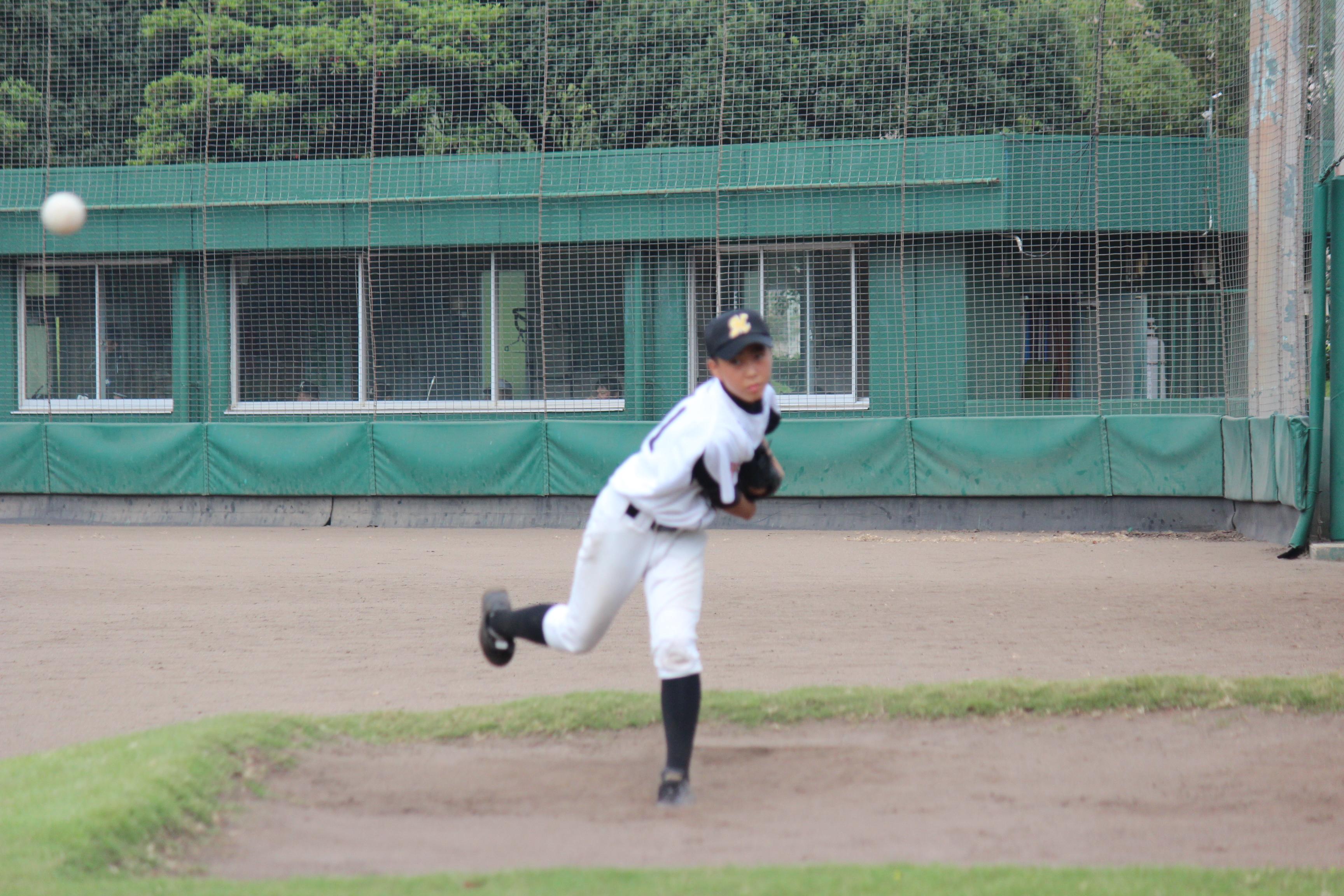 野球 (481)