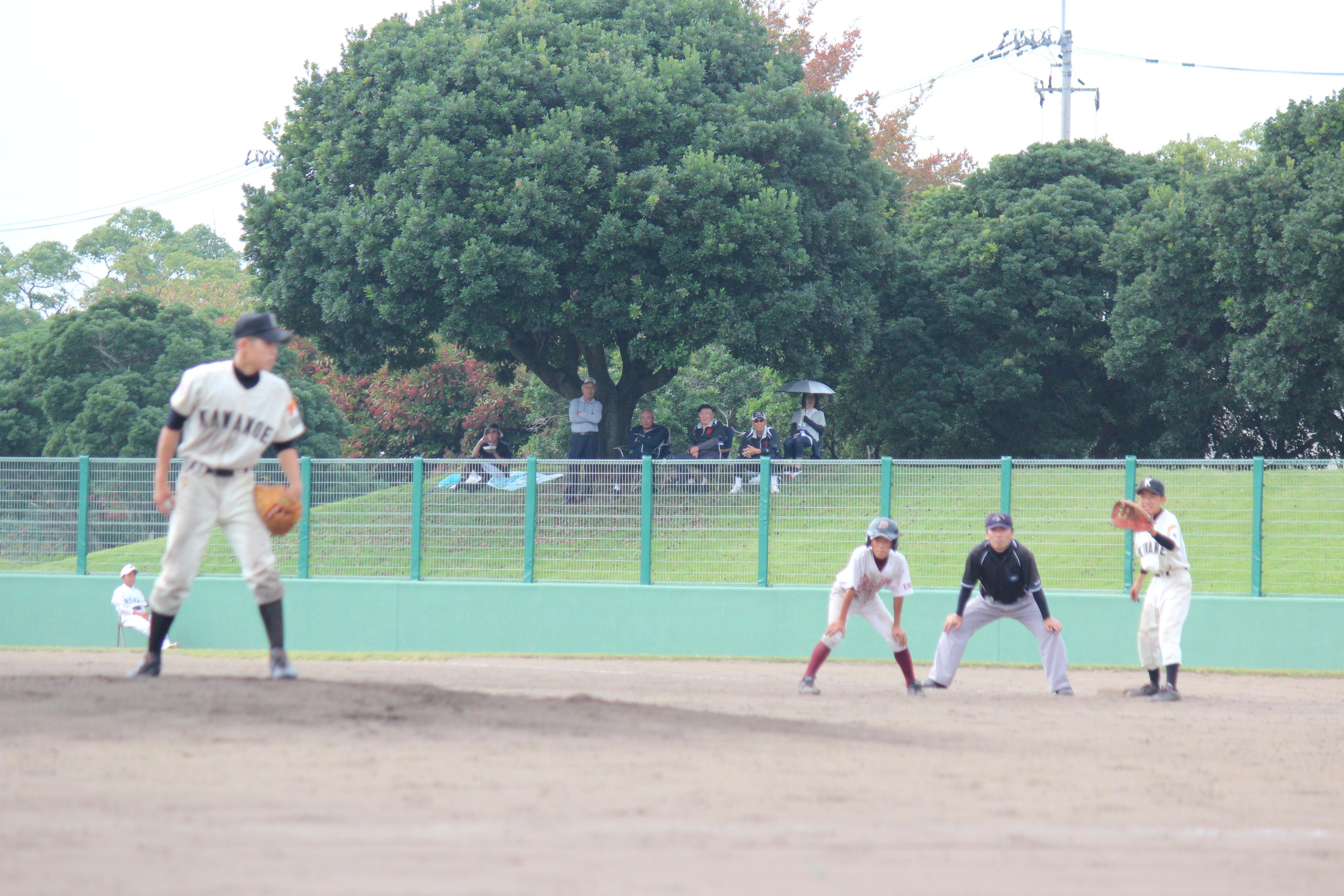 野球 (809)