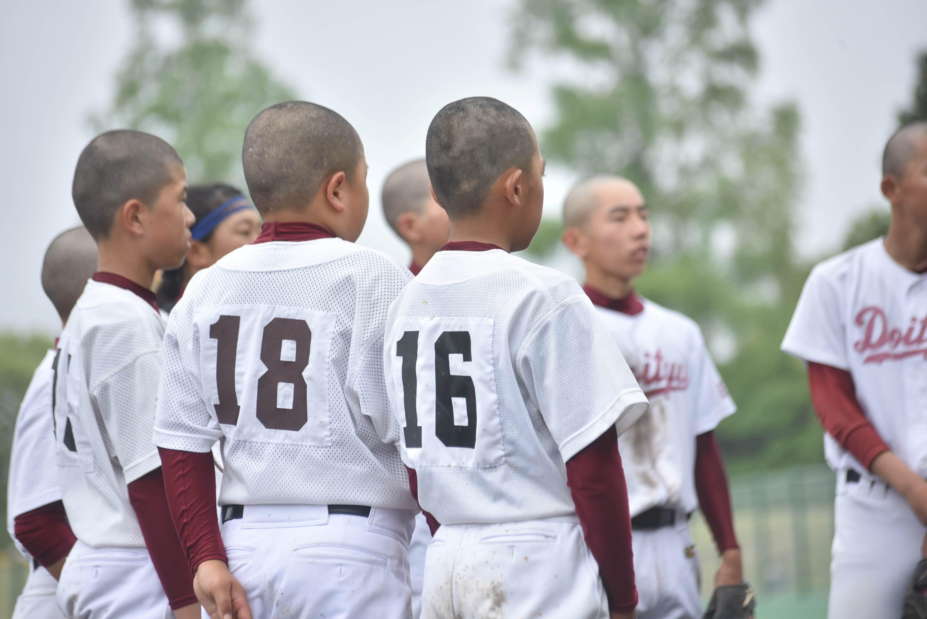 野球 (81)