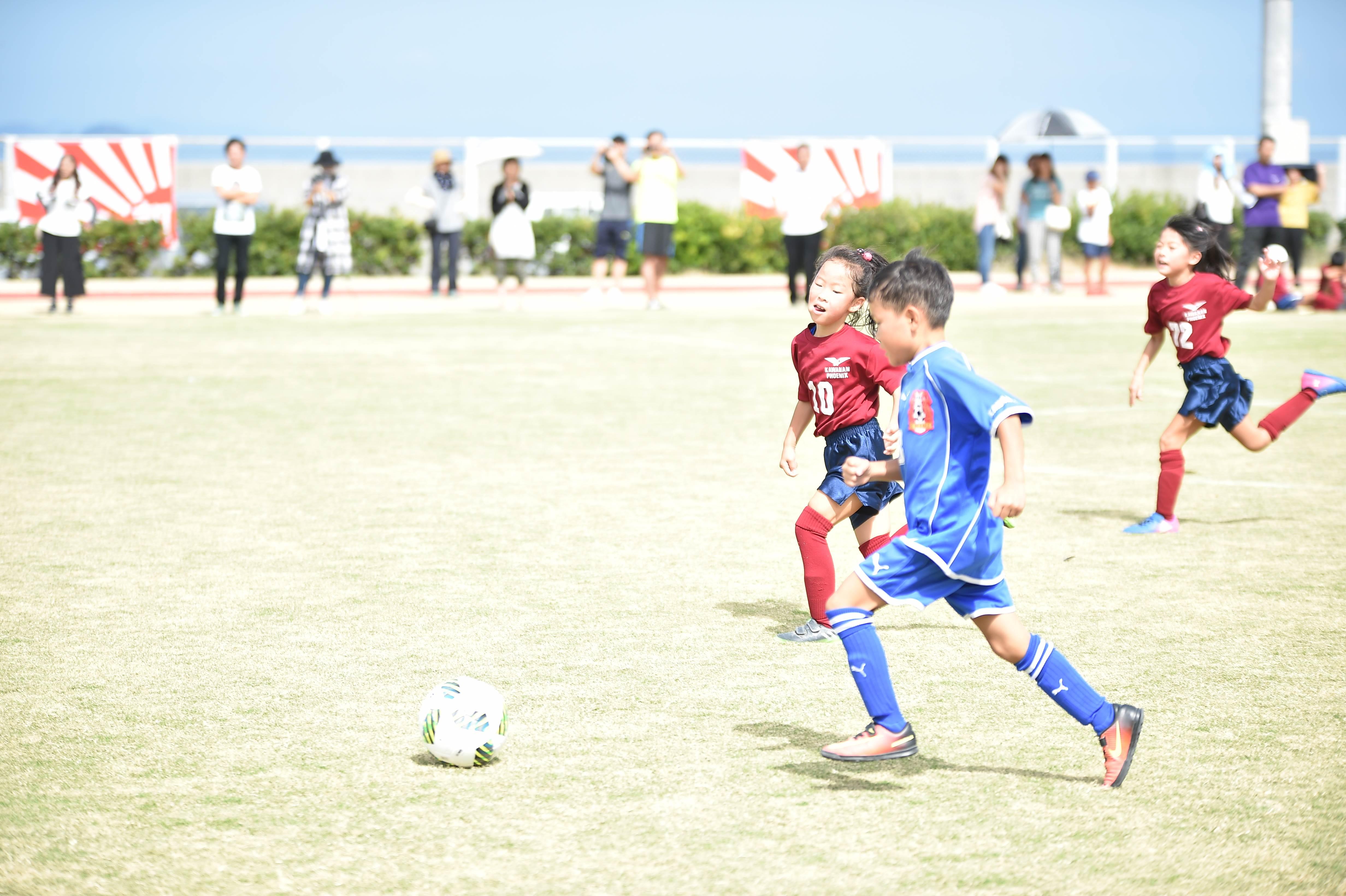 mini_soccer (209)