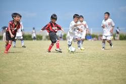 mini_soccer (333)