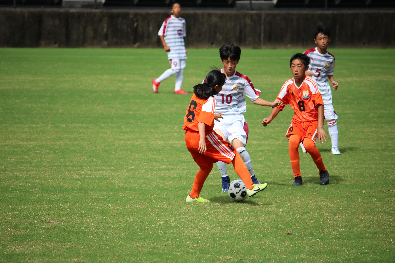 サッカー (371)