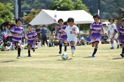 mini_soccer (498)