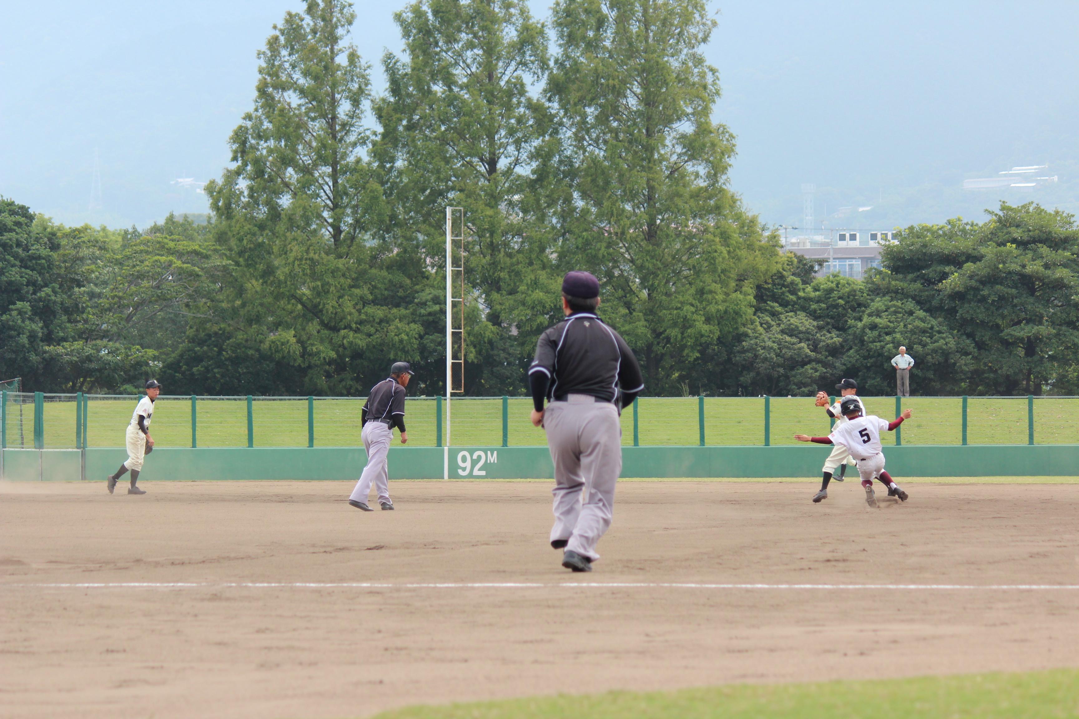 野球 (572)