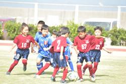 mini_soccer (543)