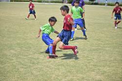 mini_soccer (438)