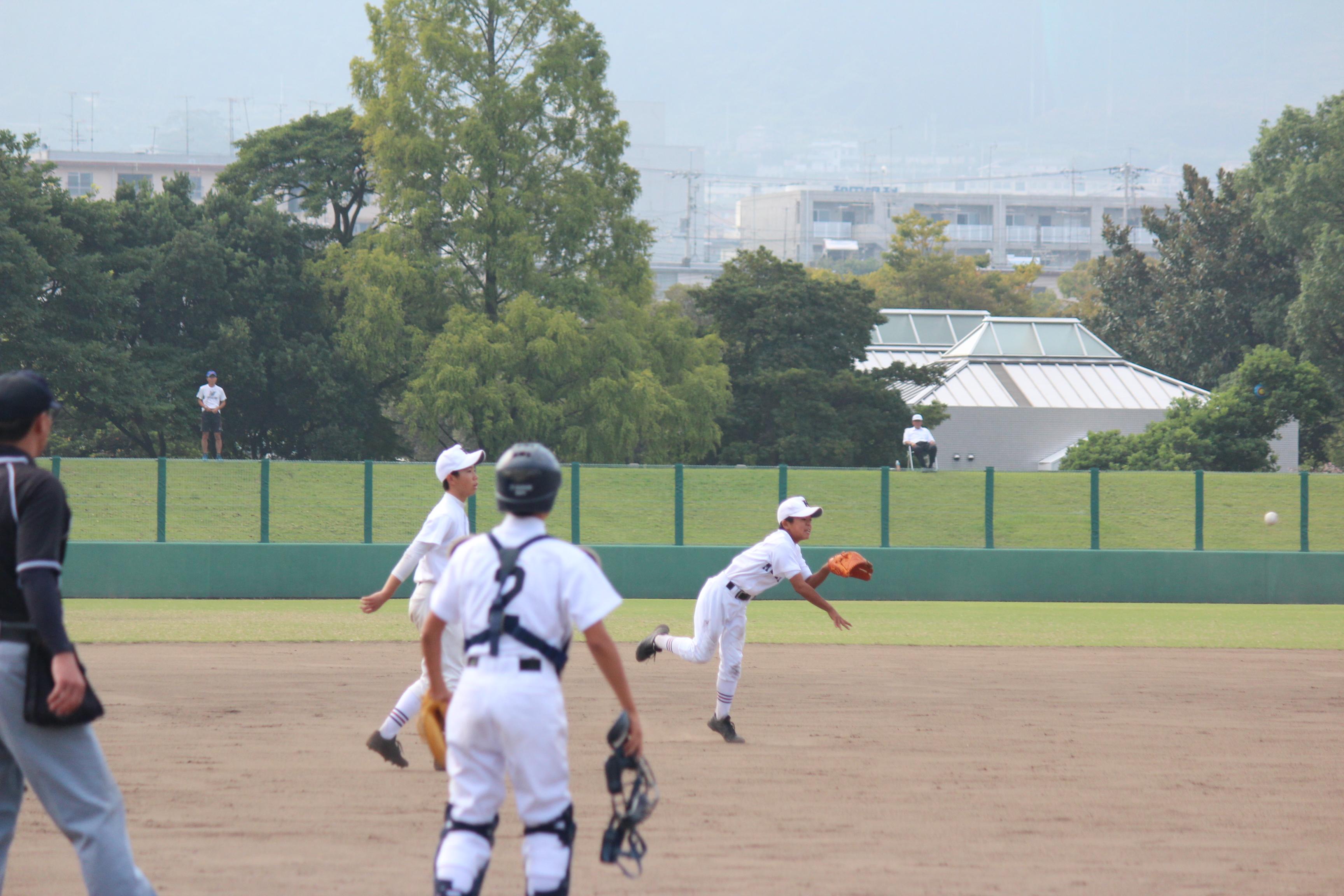 野球 (371)