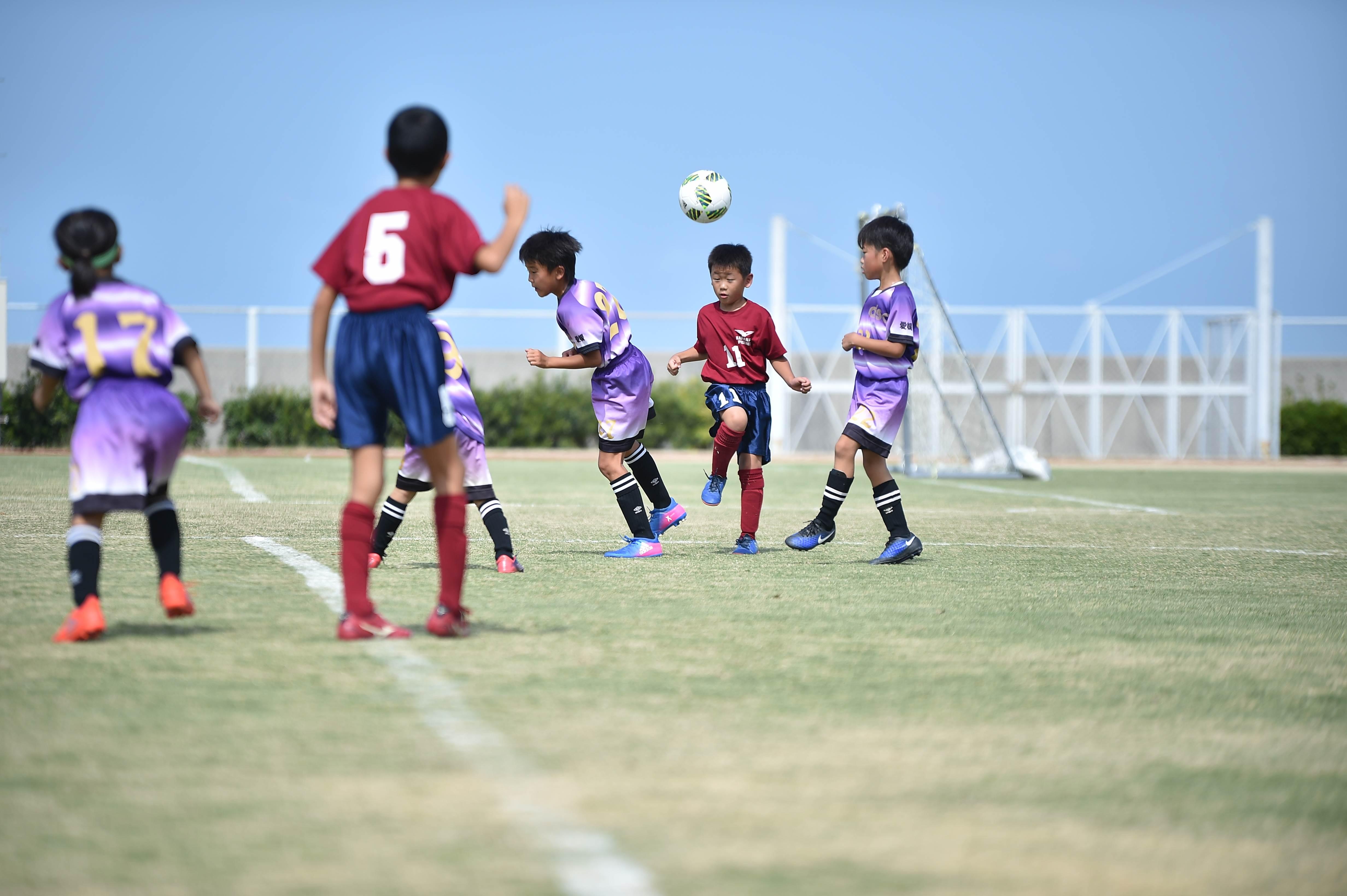 mini_soccer (281)