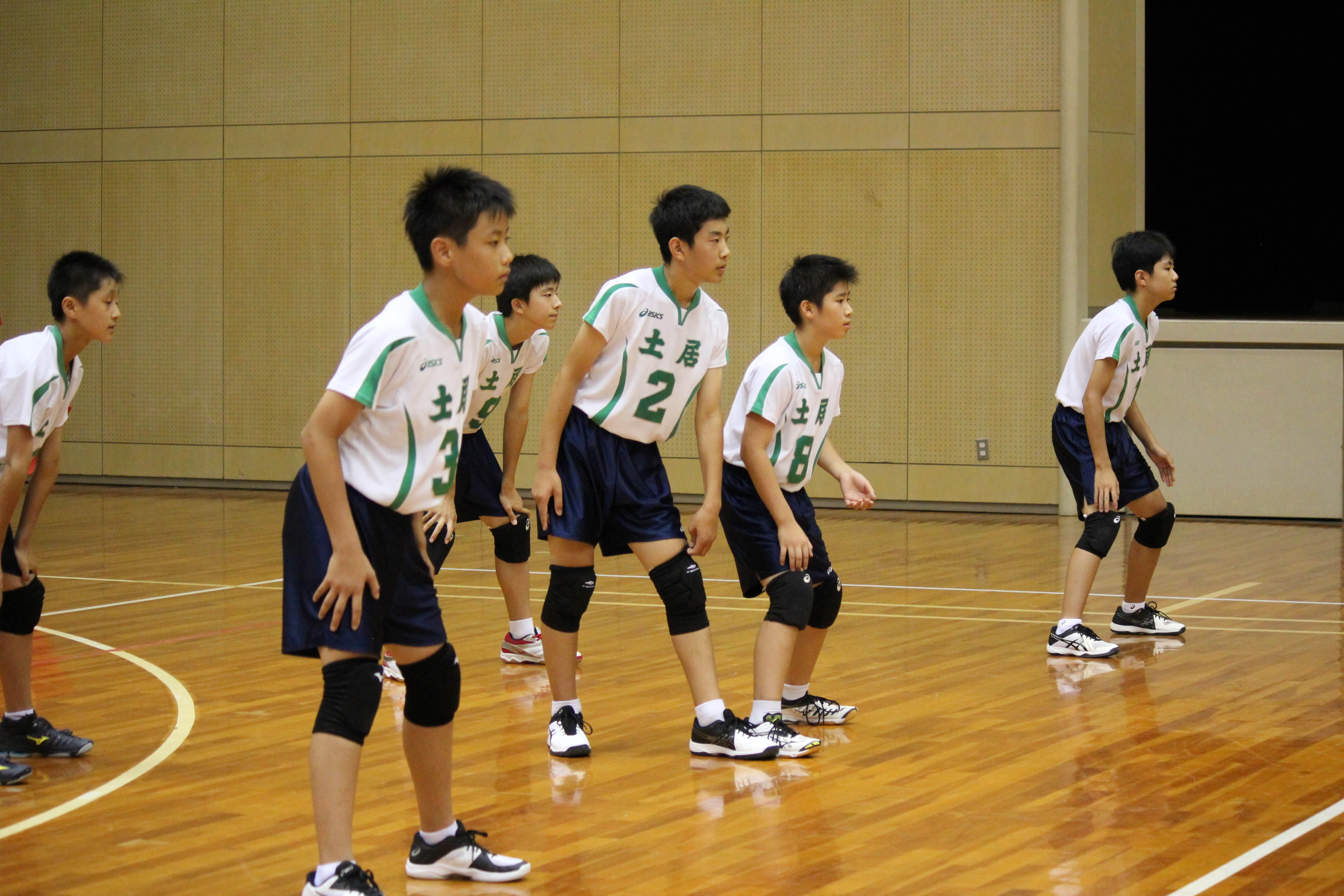 バレーボール (519)