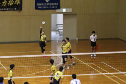 バレーボール (521)