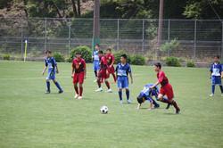 サッカー (1133)