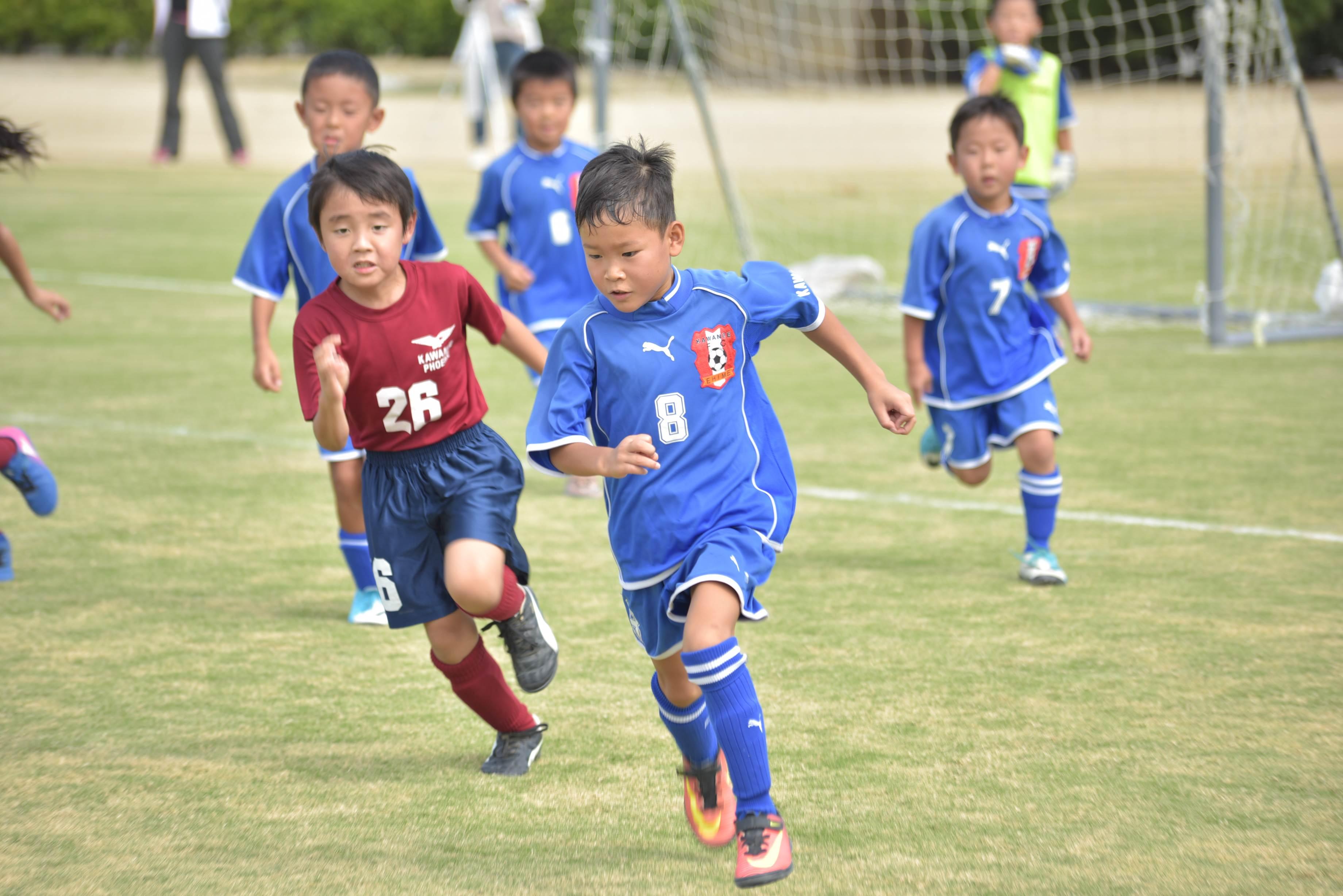 mini_soccer (573)