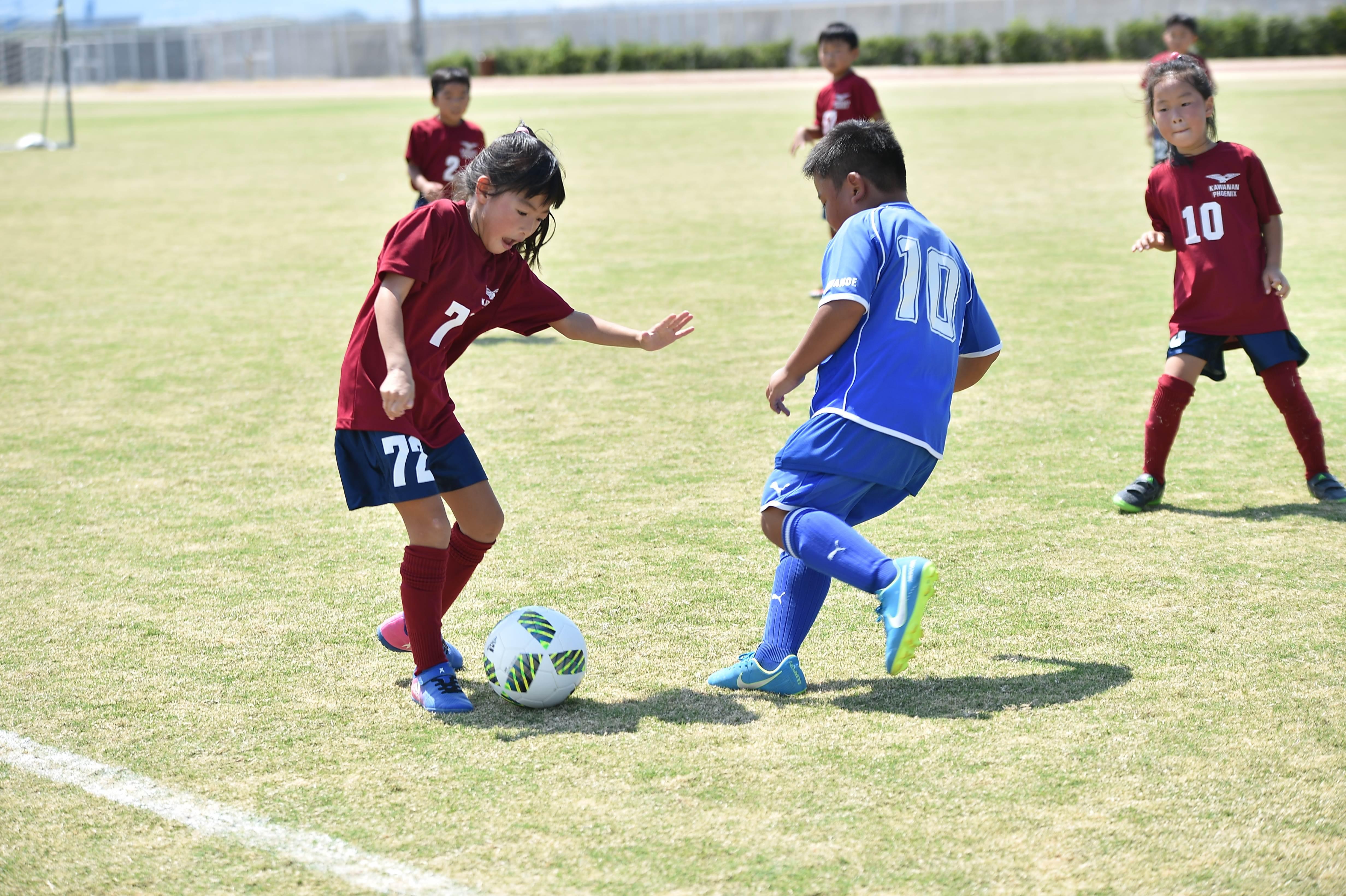 mini_soccer (509)