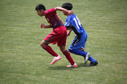 サッカー (1136)