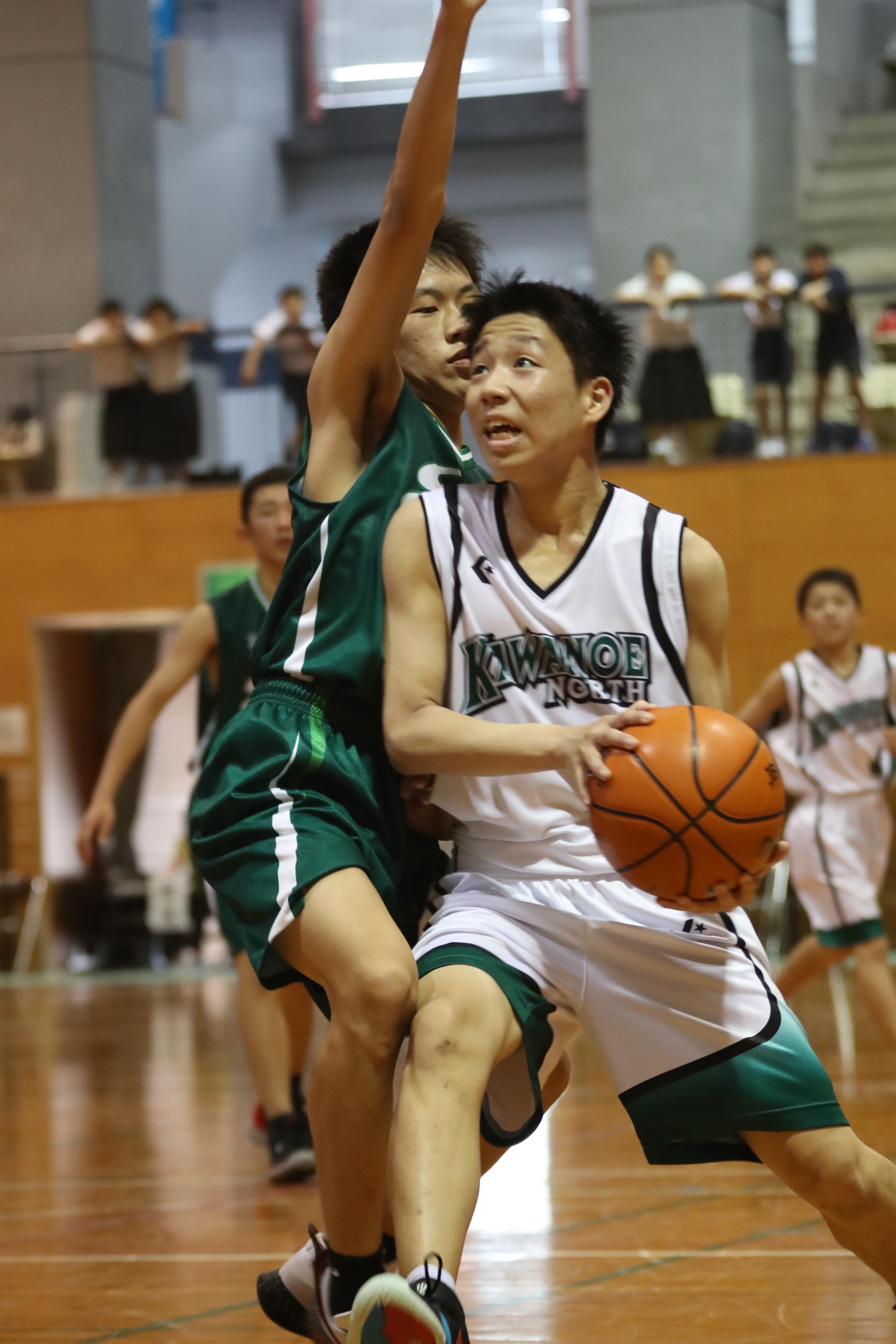 バスケット (234)