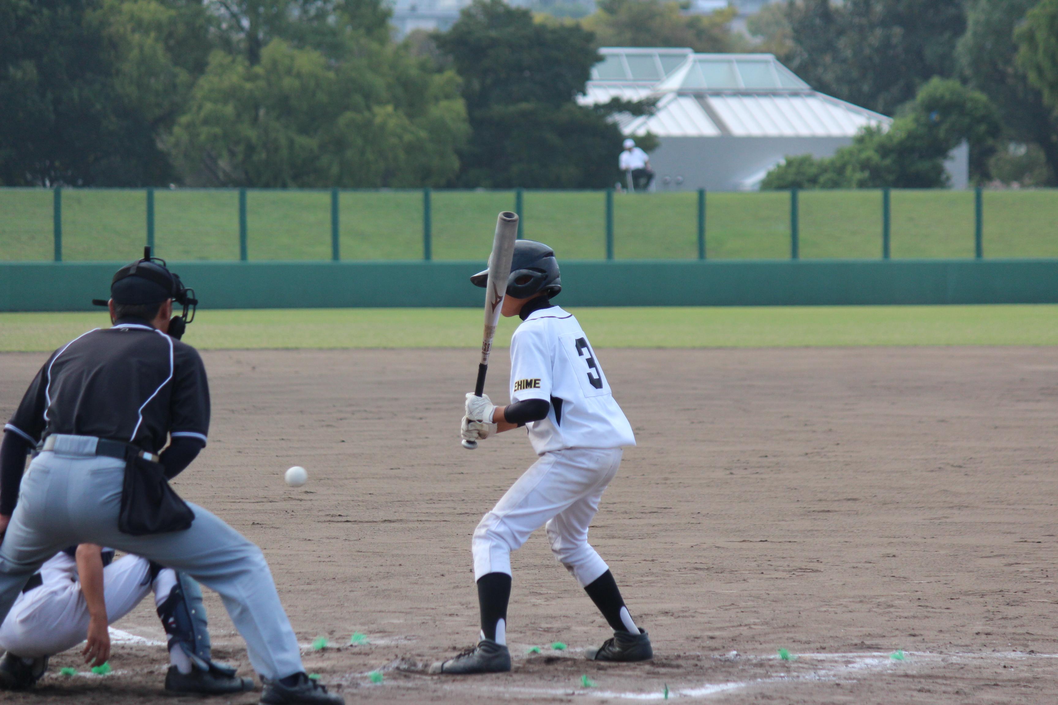 野球 (365)