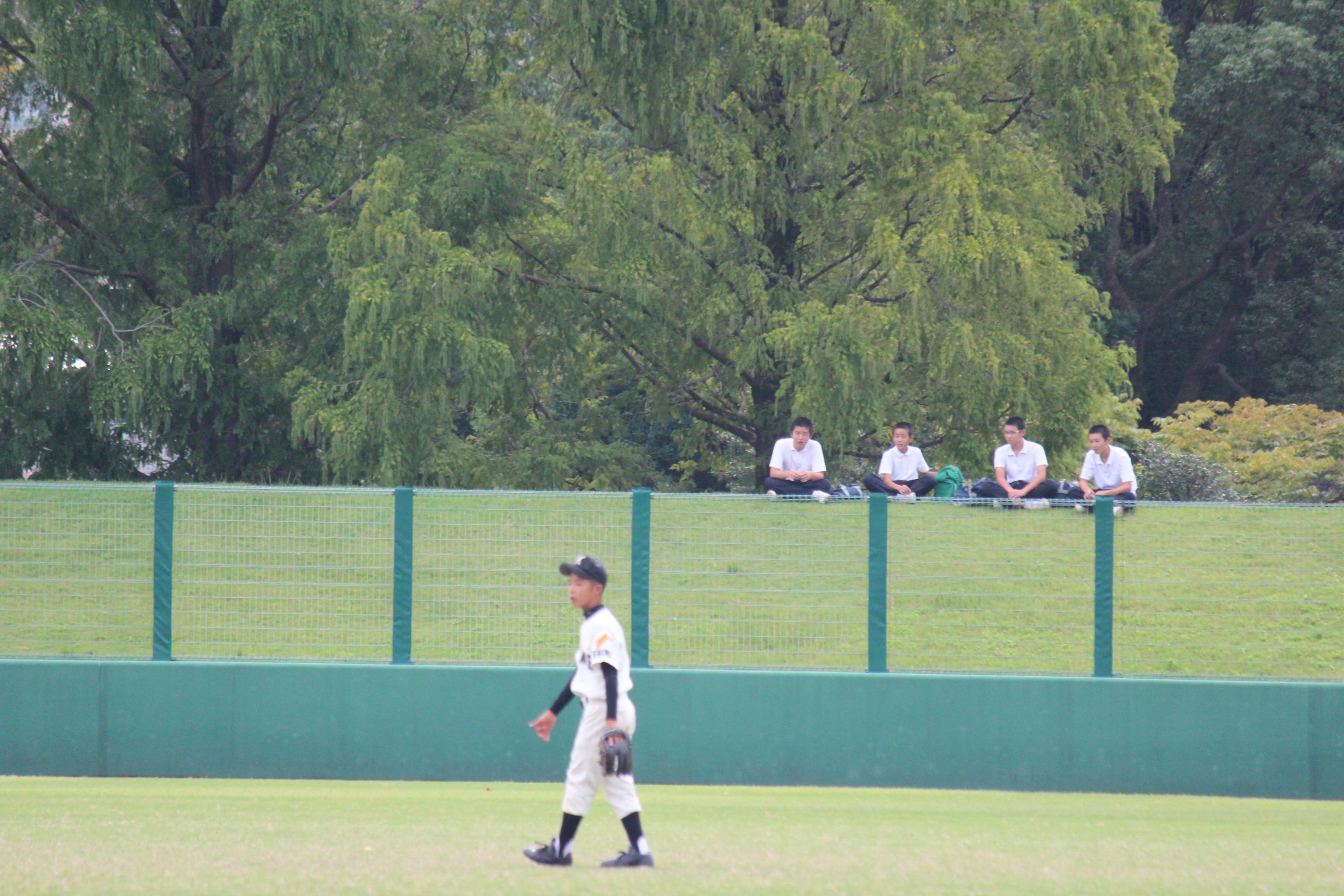 野球 (546)