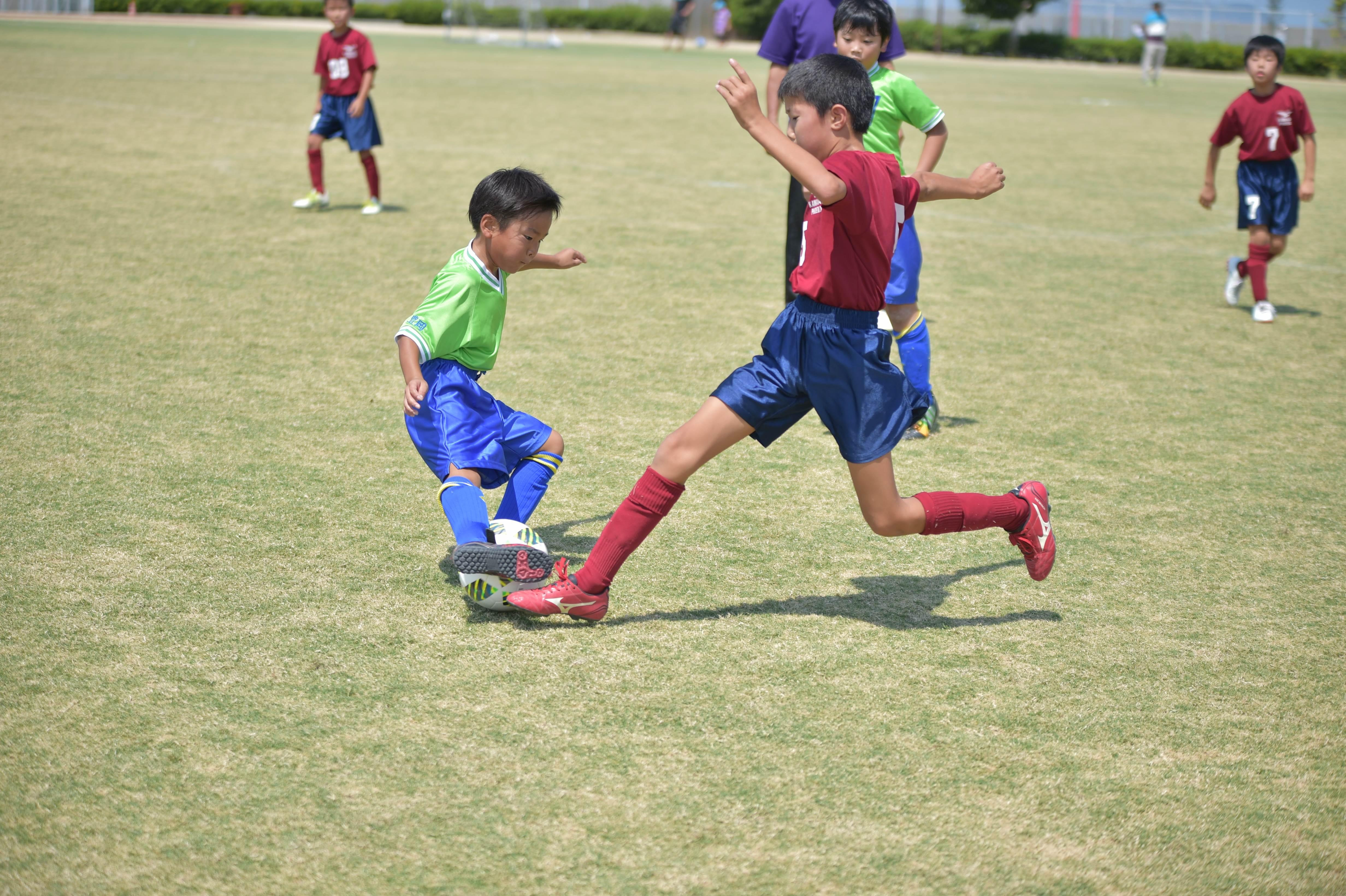 mini_soccer (437)