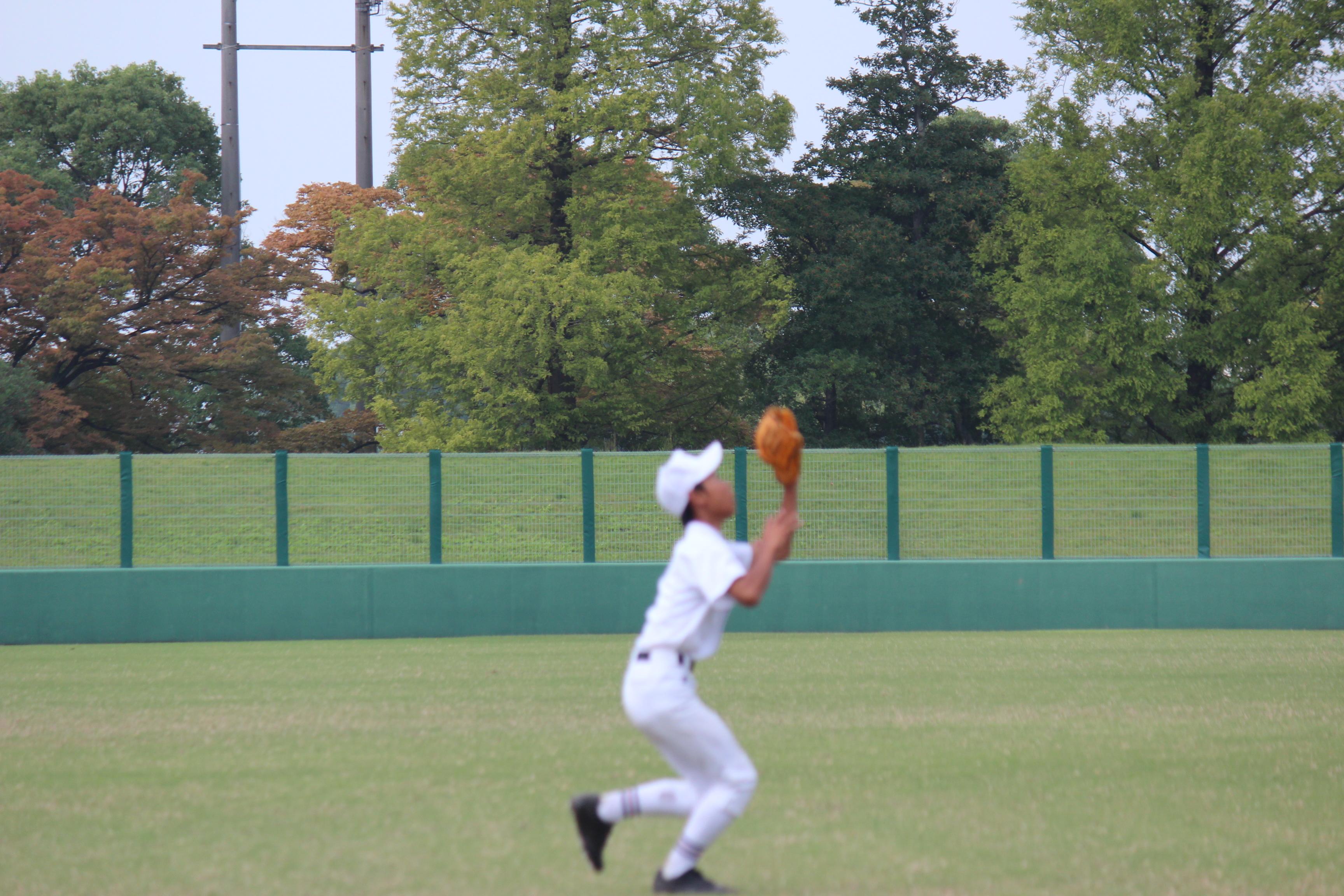 野球 (463)