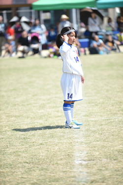 mini_soccer (523)